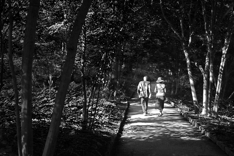 Down the Path, Blackandwhite, Path, Woman, Walk, HQ Photo