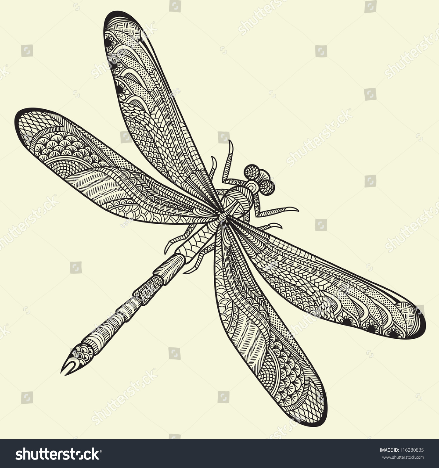 Dragonfly abstract photo