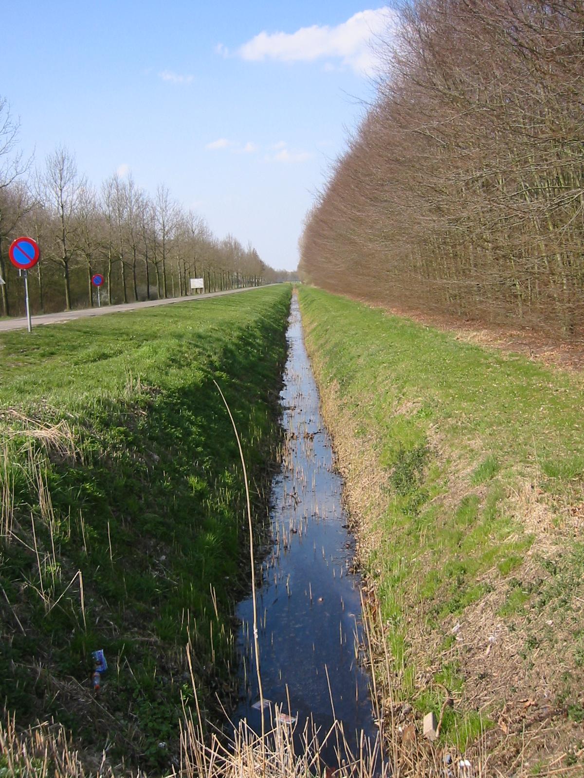 Ditch - Wikipedia