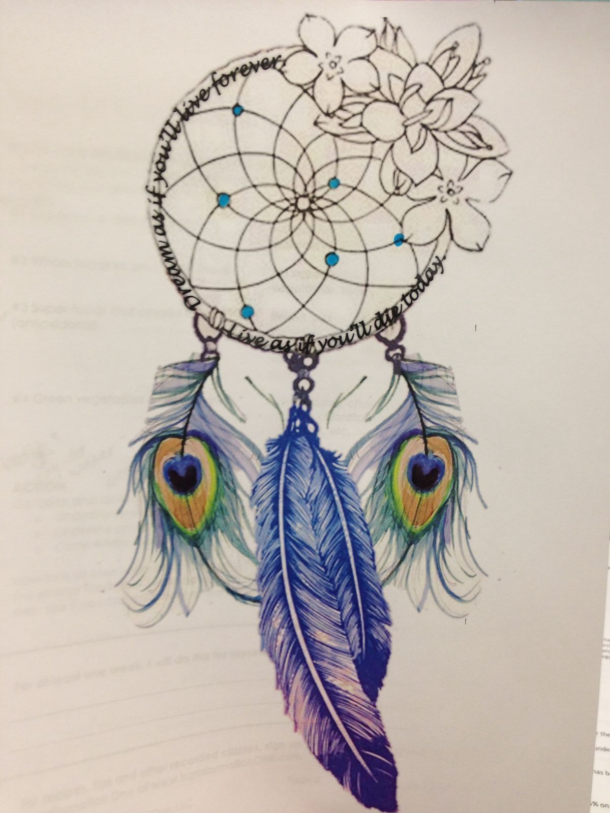 Dream catcher with peacock feathers////// must have!   tattoo ...
