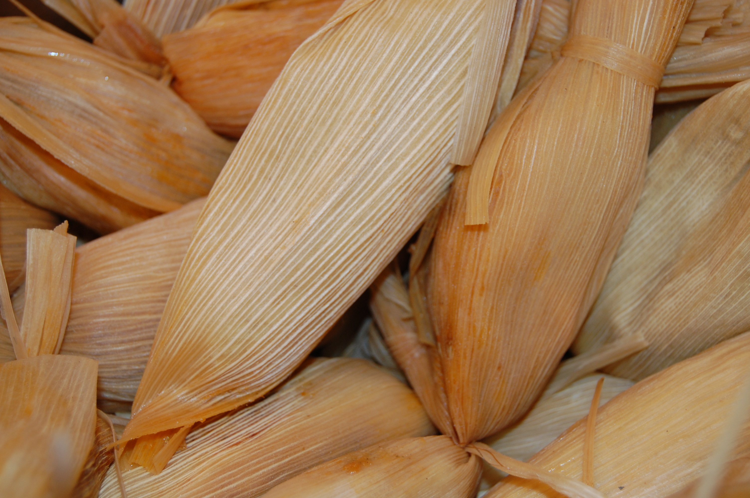 Sandra's Kitchen Studio: Tamales