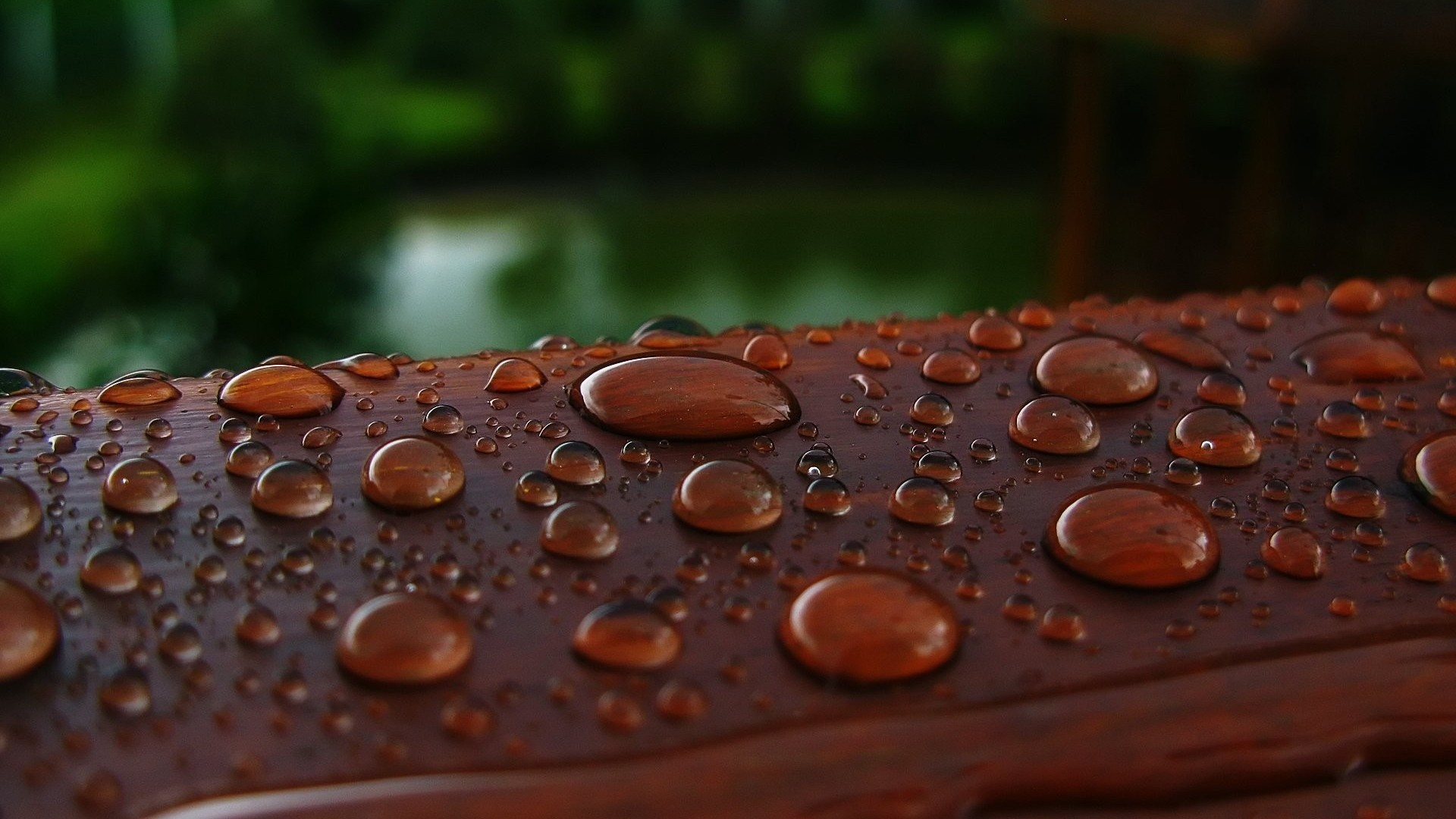 Droplets on wood photo