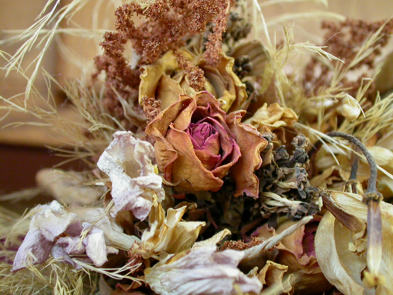 Dry flower decoration, Decoration, Dried, Dry, Flowers, HQ Photo
