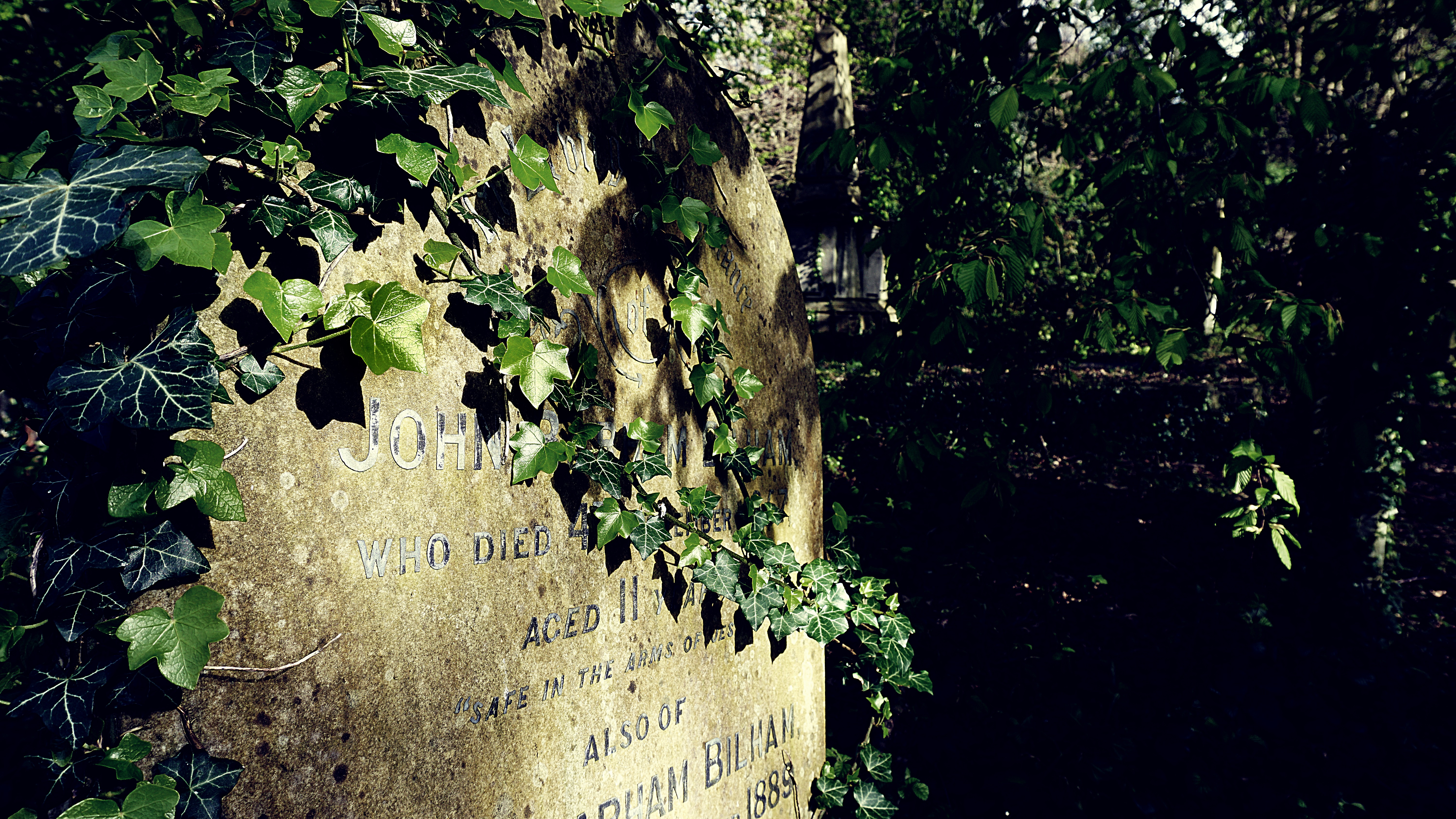 DSC00594-02 Rosary Cemetery - Norwich - UK, A6000, Cemetery, Creativecommons, Grave, HQ Photo