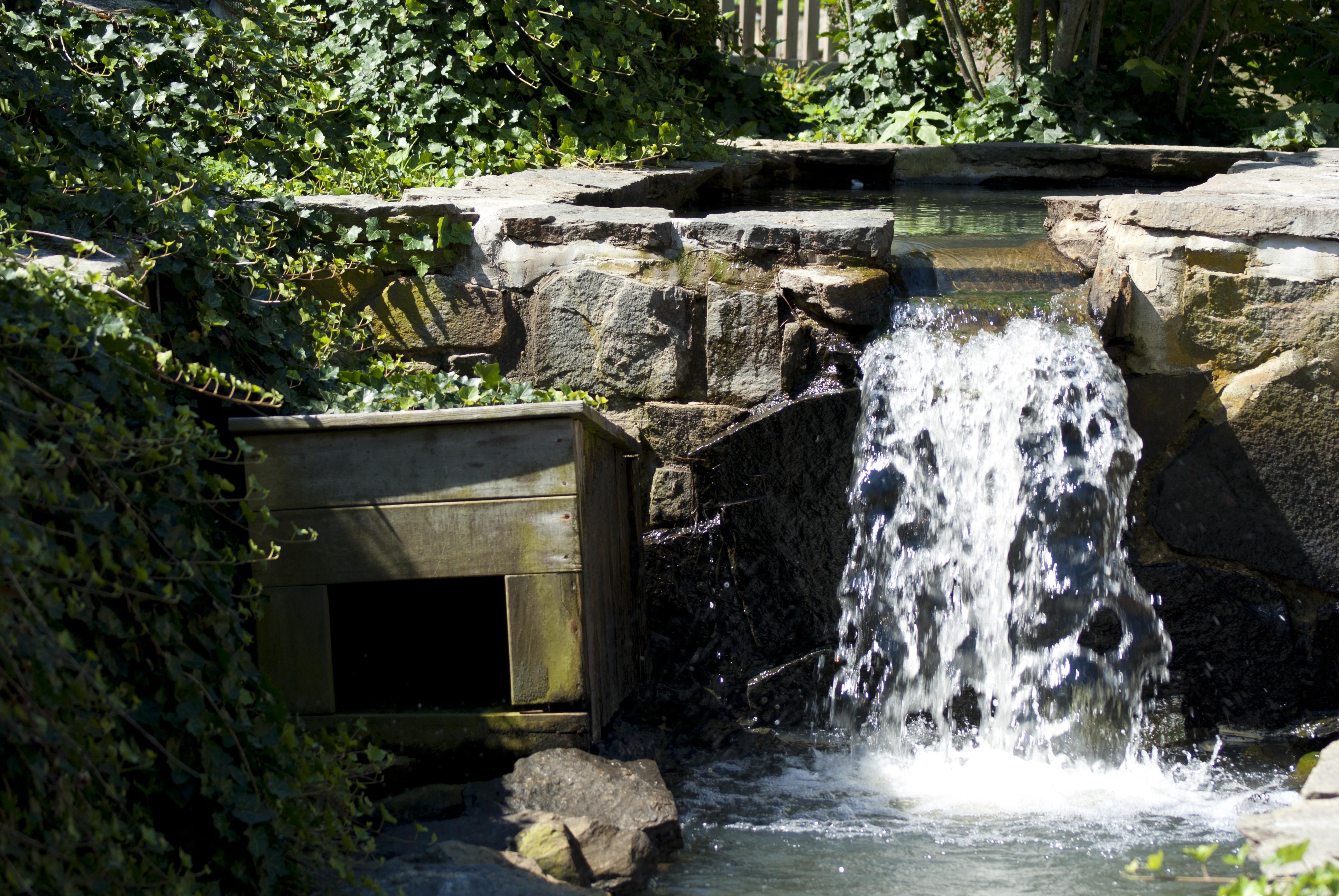 Duck Garden, Brown, Rock, Wet, Waterfall, HQ Photo