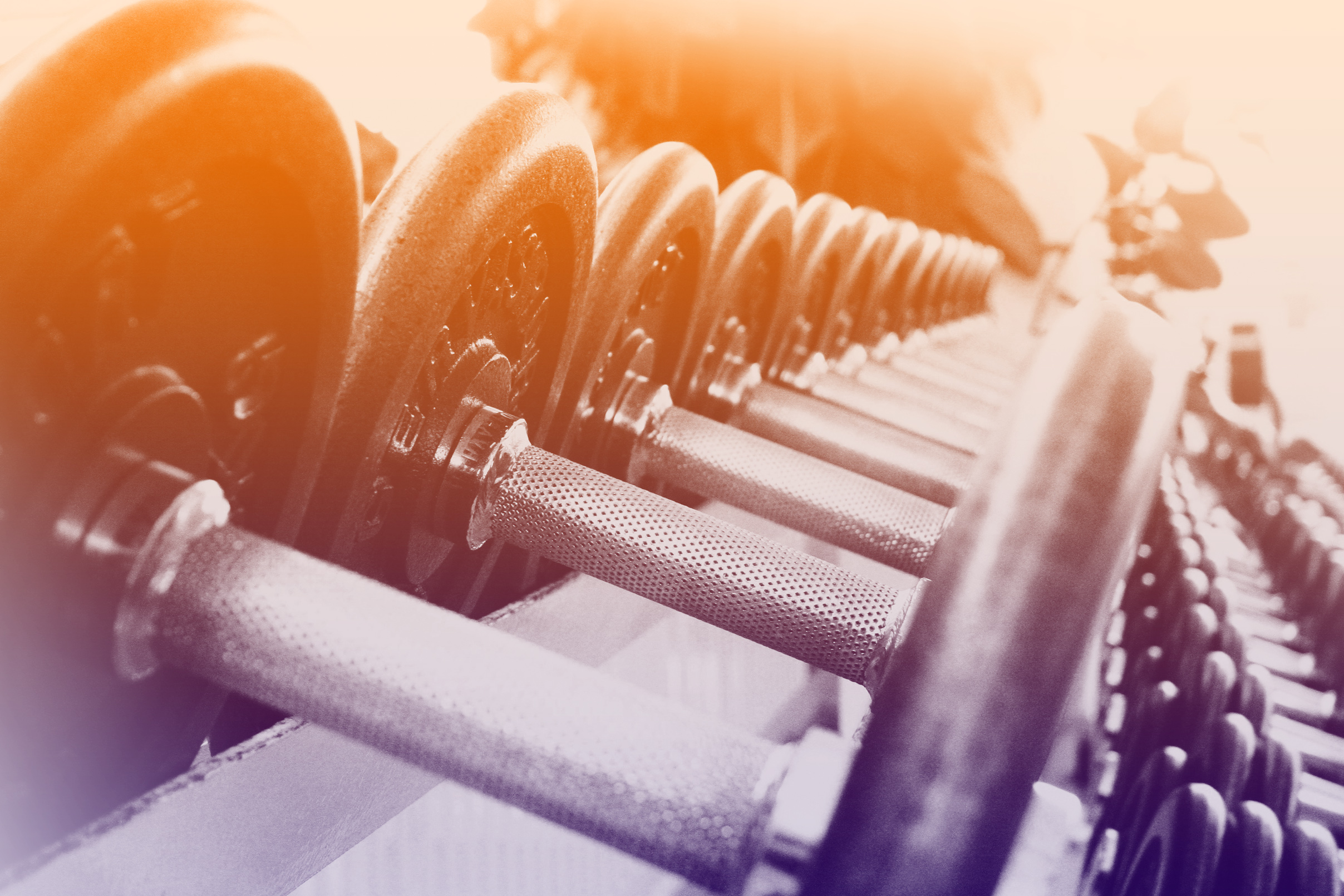 Dumbbells in a Row - Fitness Concept, Activity, Shape, Nobody, Objects, HQ Photo