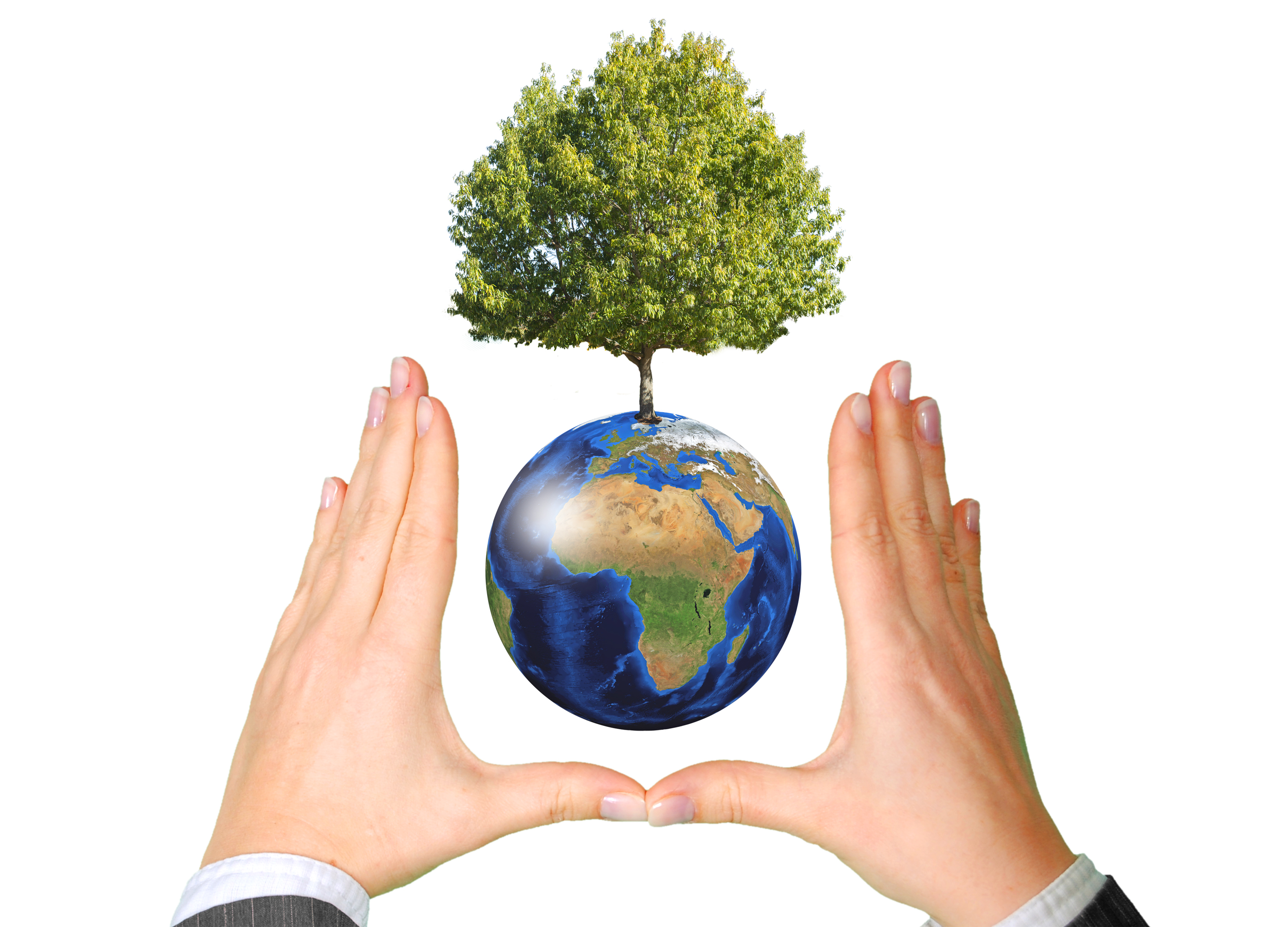 Earth with Tree between Hands - Ecology Concept, World, Plant, Human, Idea, HQ Photo