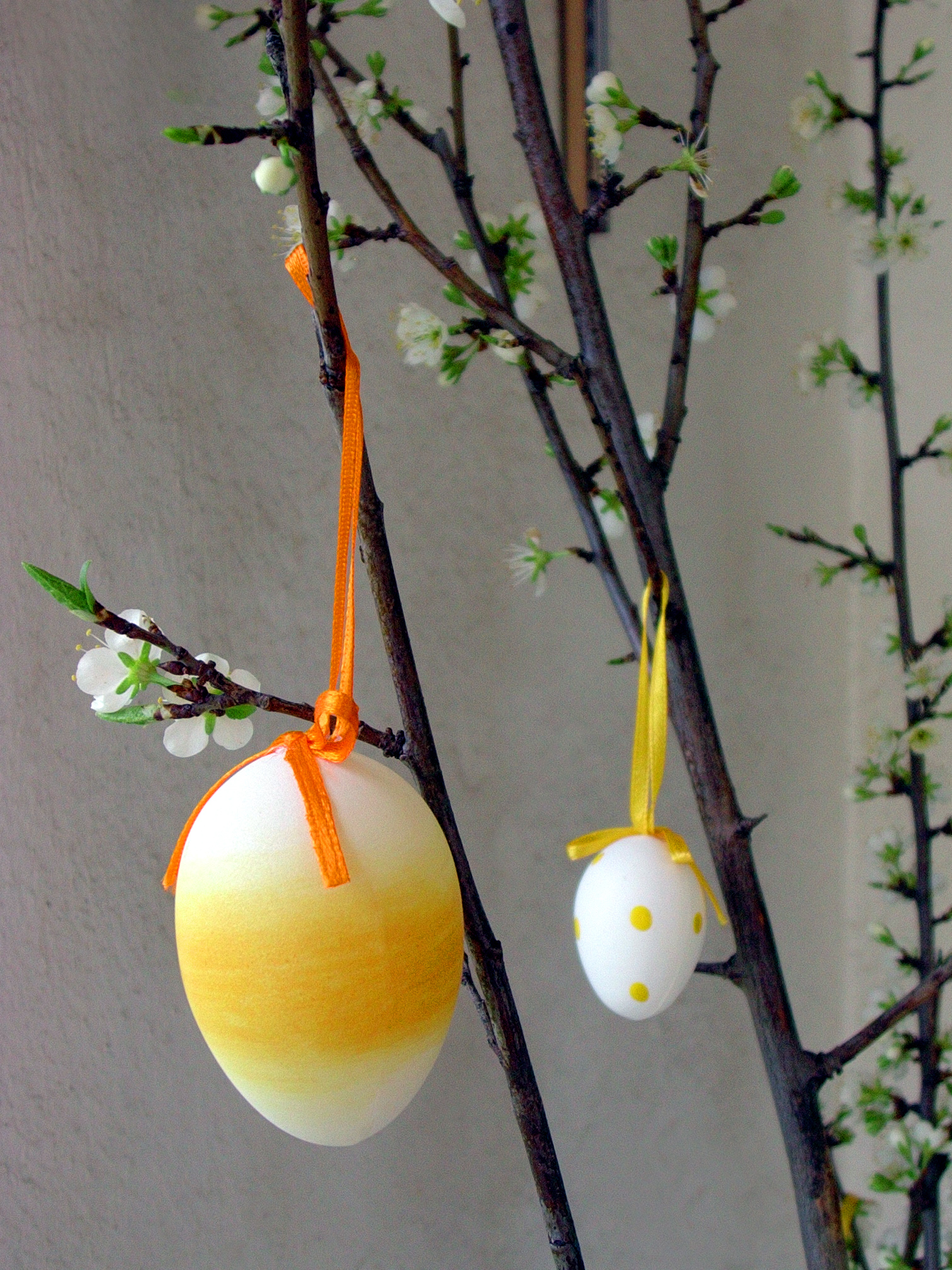 Easter Egg Decoration, Branch, Celebration, Cherry, Decoration, HQ Photo