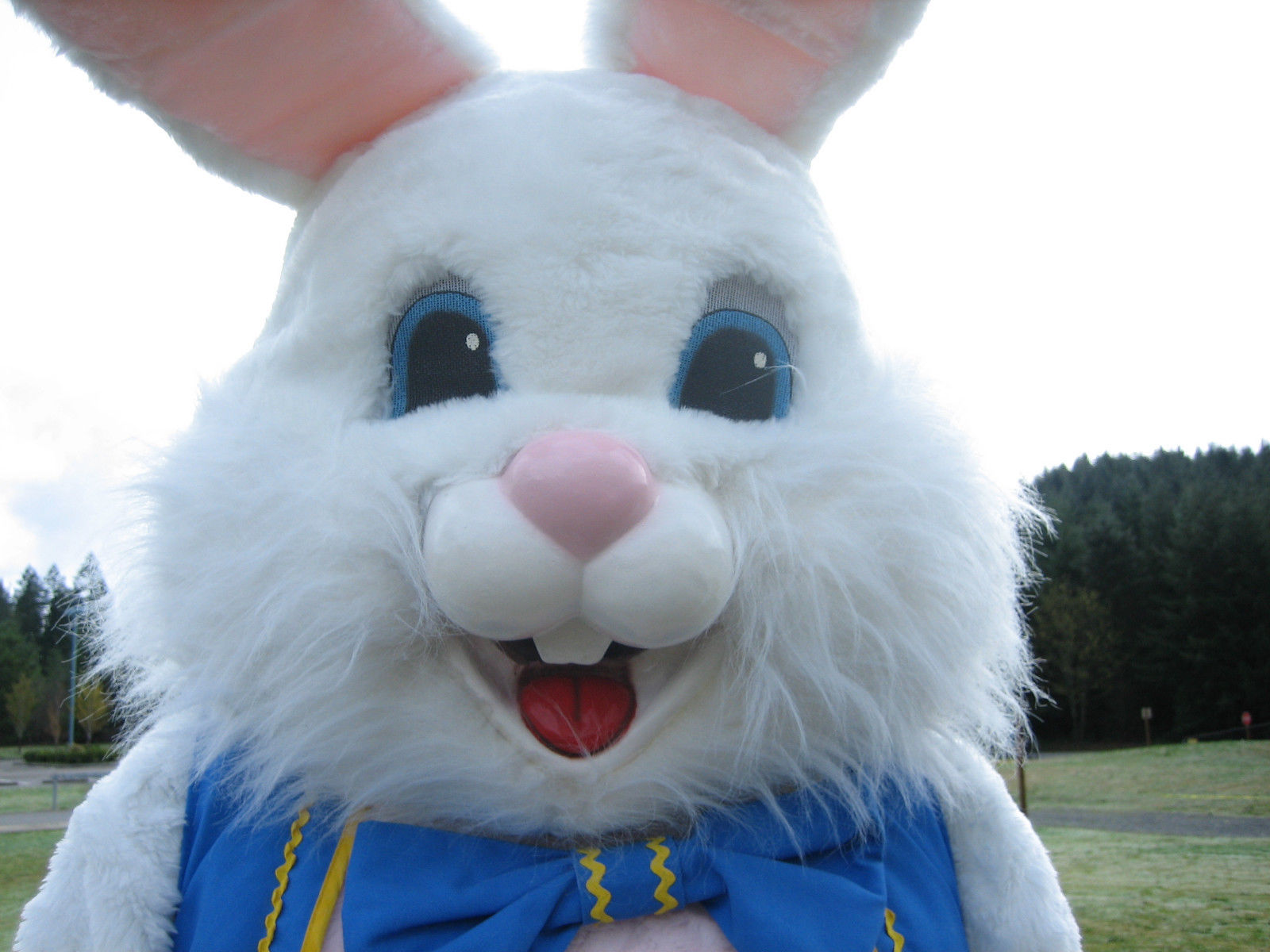 Easter Party – Kids Party Entertainment (310) 935-7373