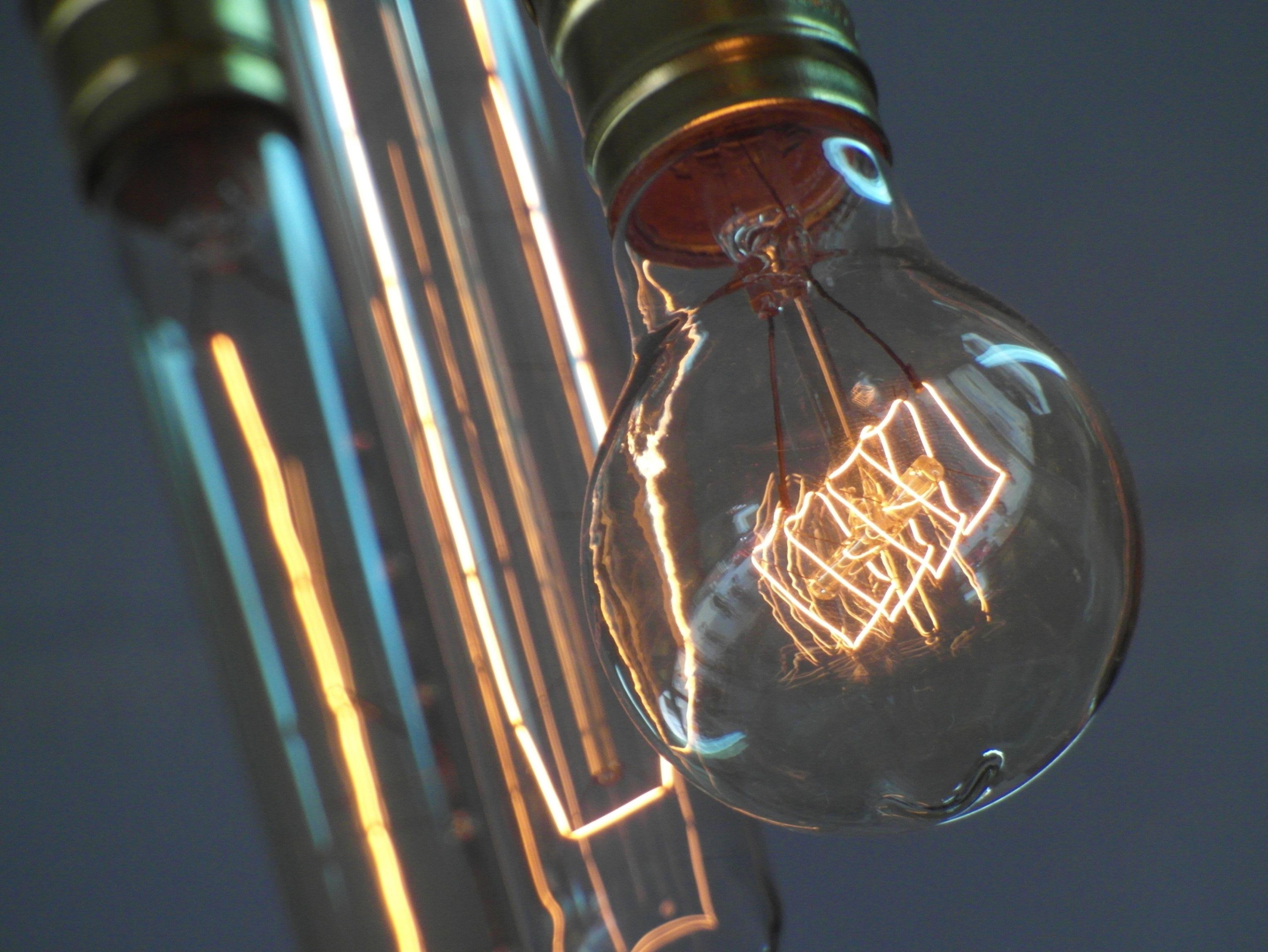 Edison Light Bulbs, Antique, Isolated, Unusual, Thomas, HQ Photo