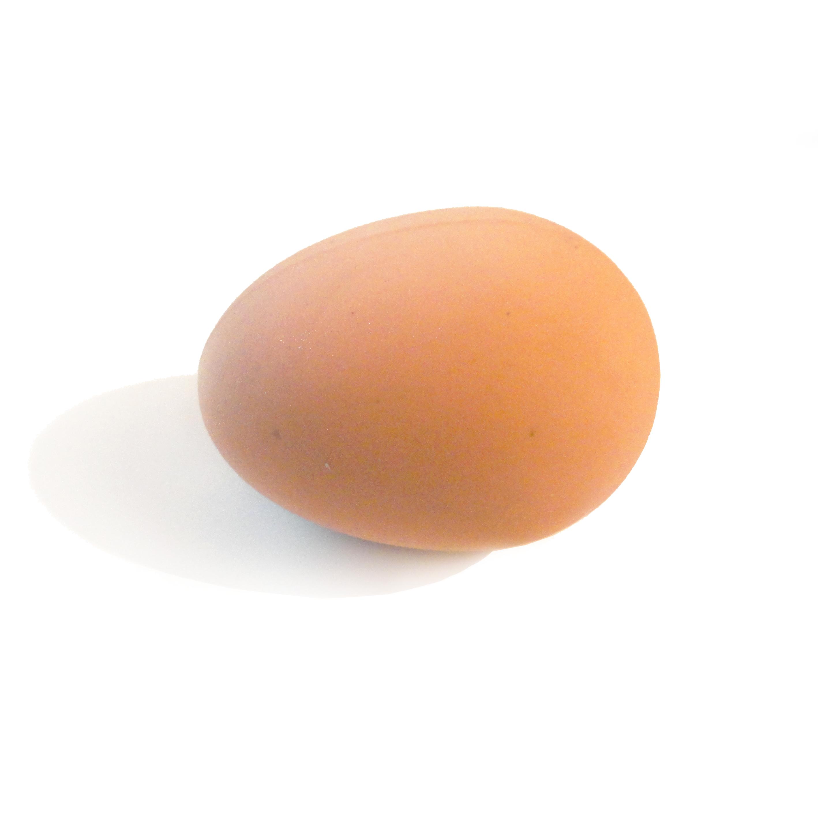 Rubber Joke Egg - Choizilla | Gifts, T-Shirts & More
