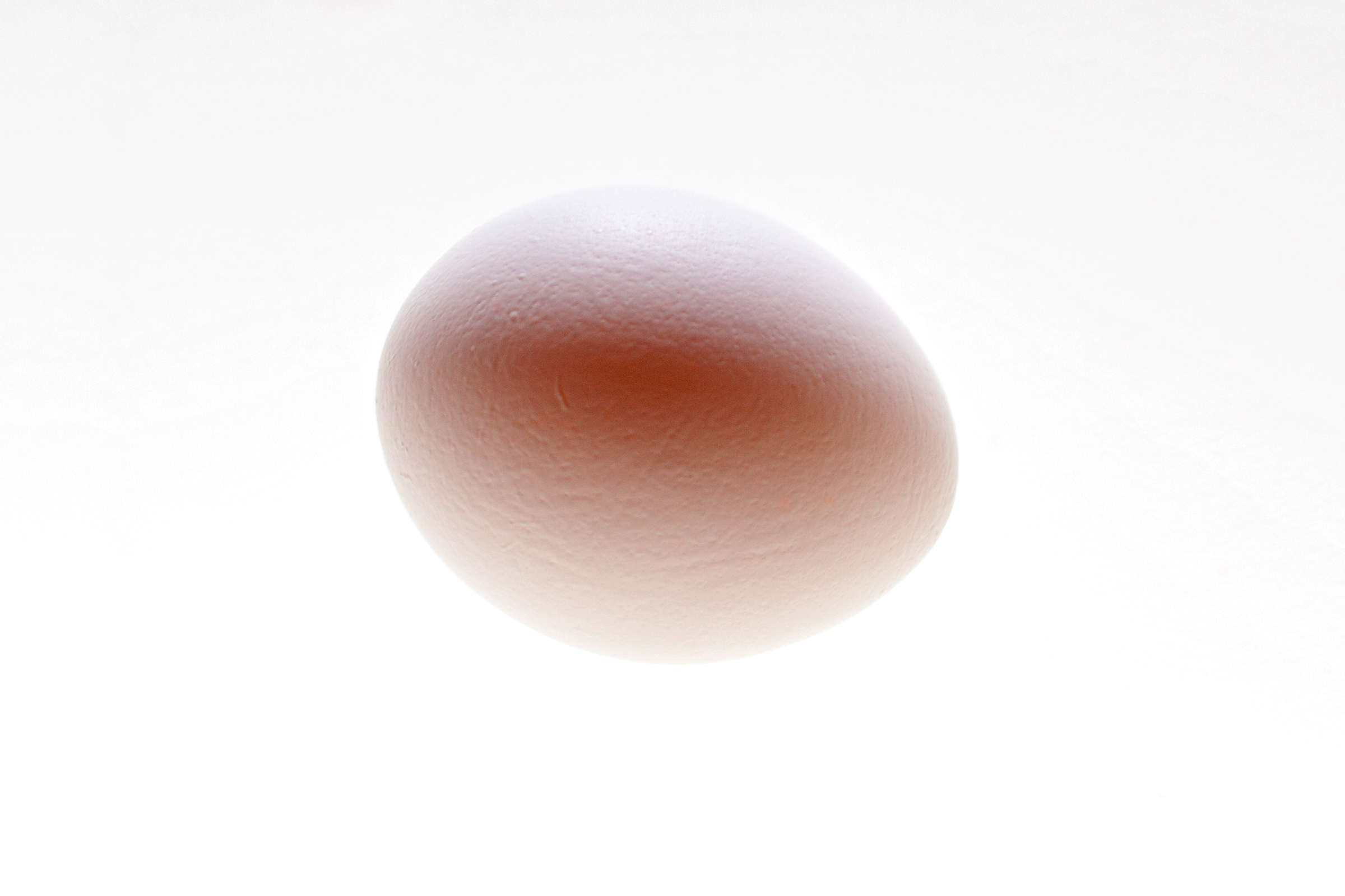 Egg, Hen, Ingredient, Isolated, Healthy, HQ Photo