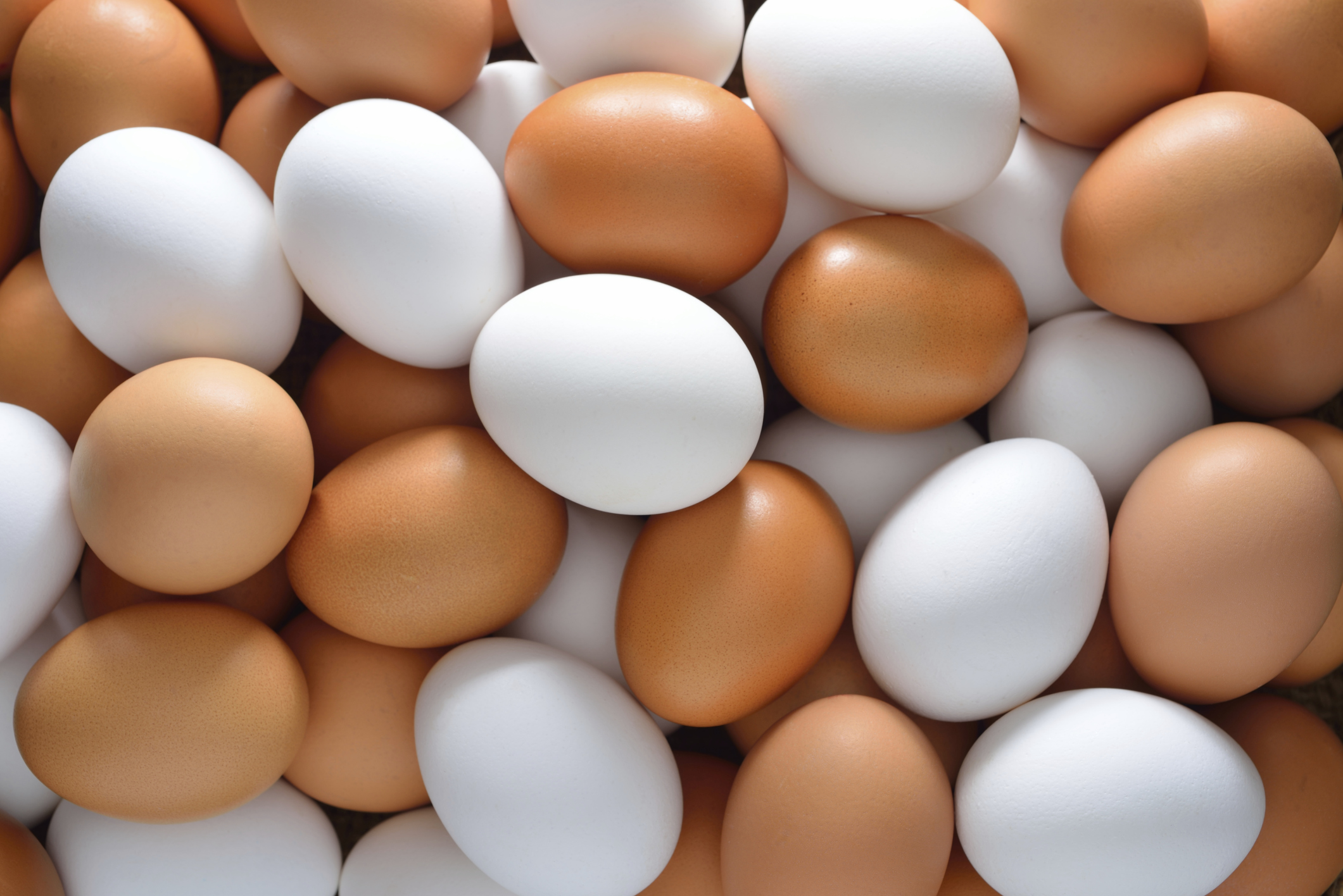 How to Choose Eggs: Understanding Egg Labels | The Dolce Diet