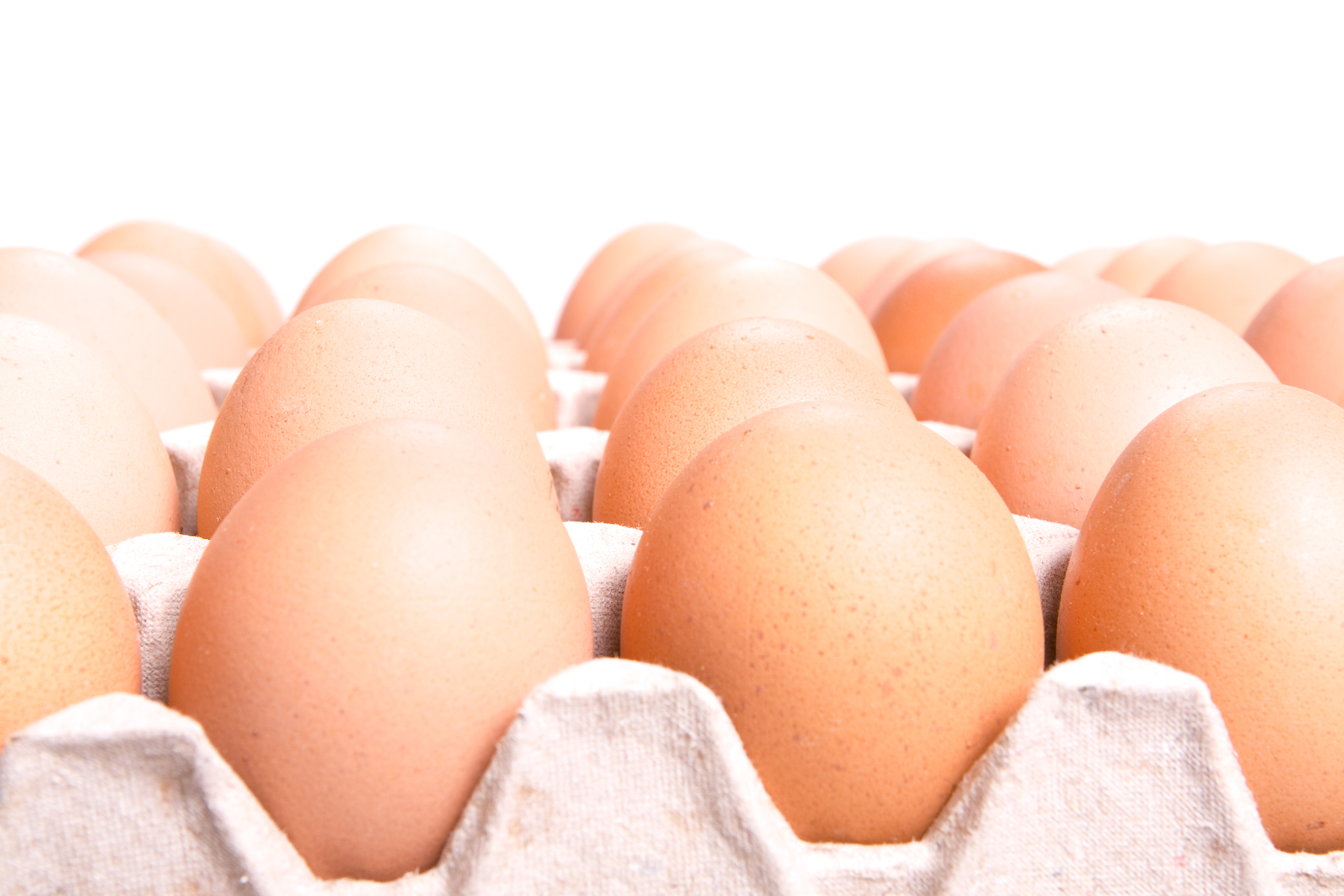 eggs, Above, Healthy, View, Uncooked, HQ Photo