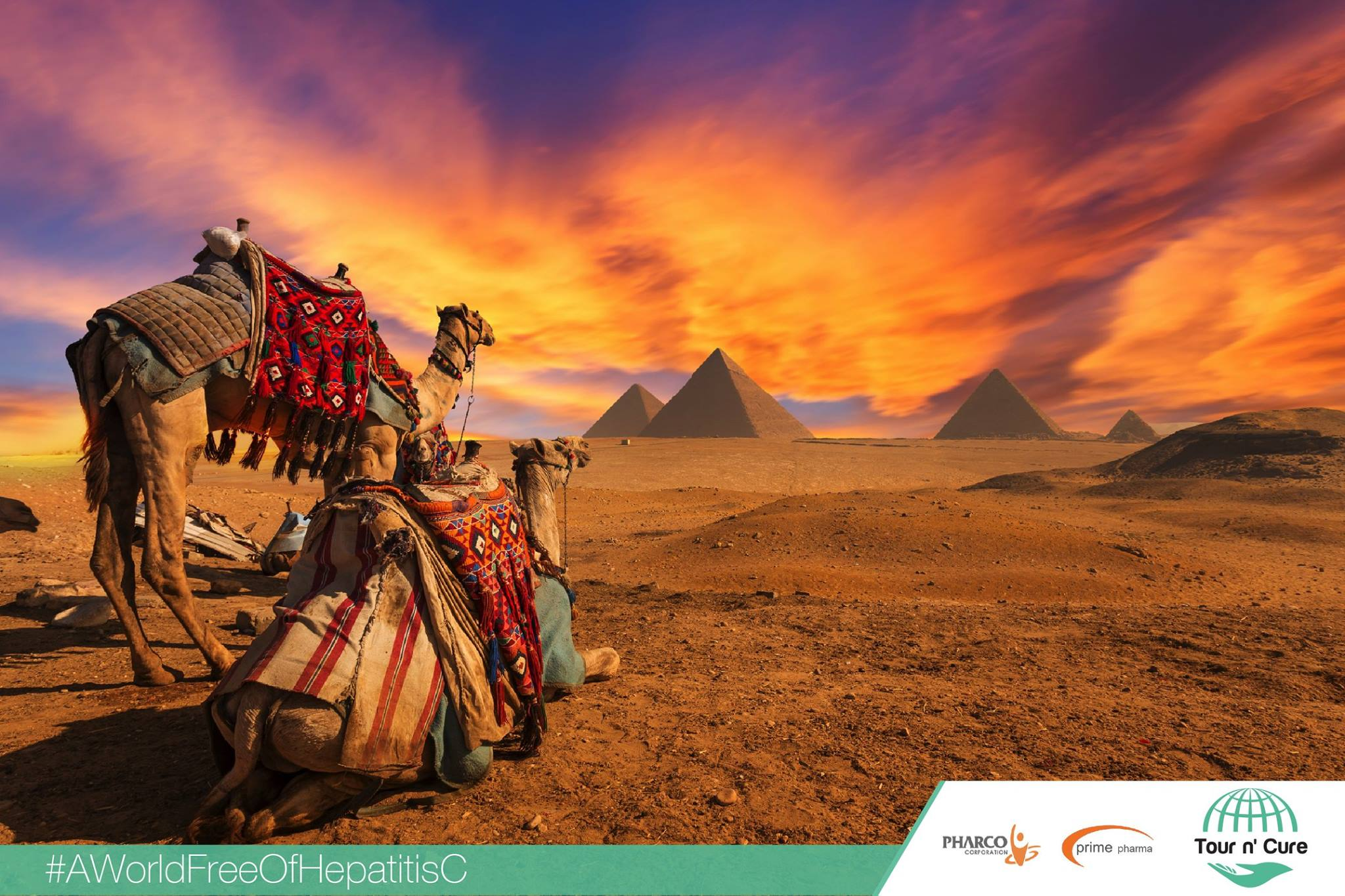 Tour n' Cure: Egypt to Increase Tourism by Inviting Hepatitis C ...