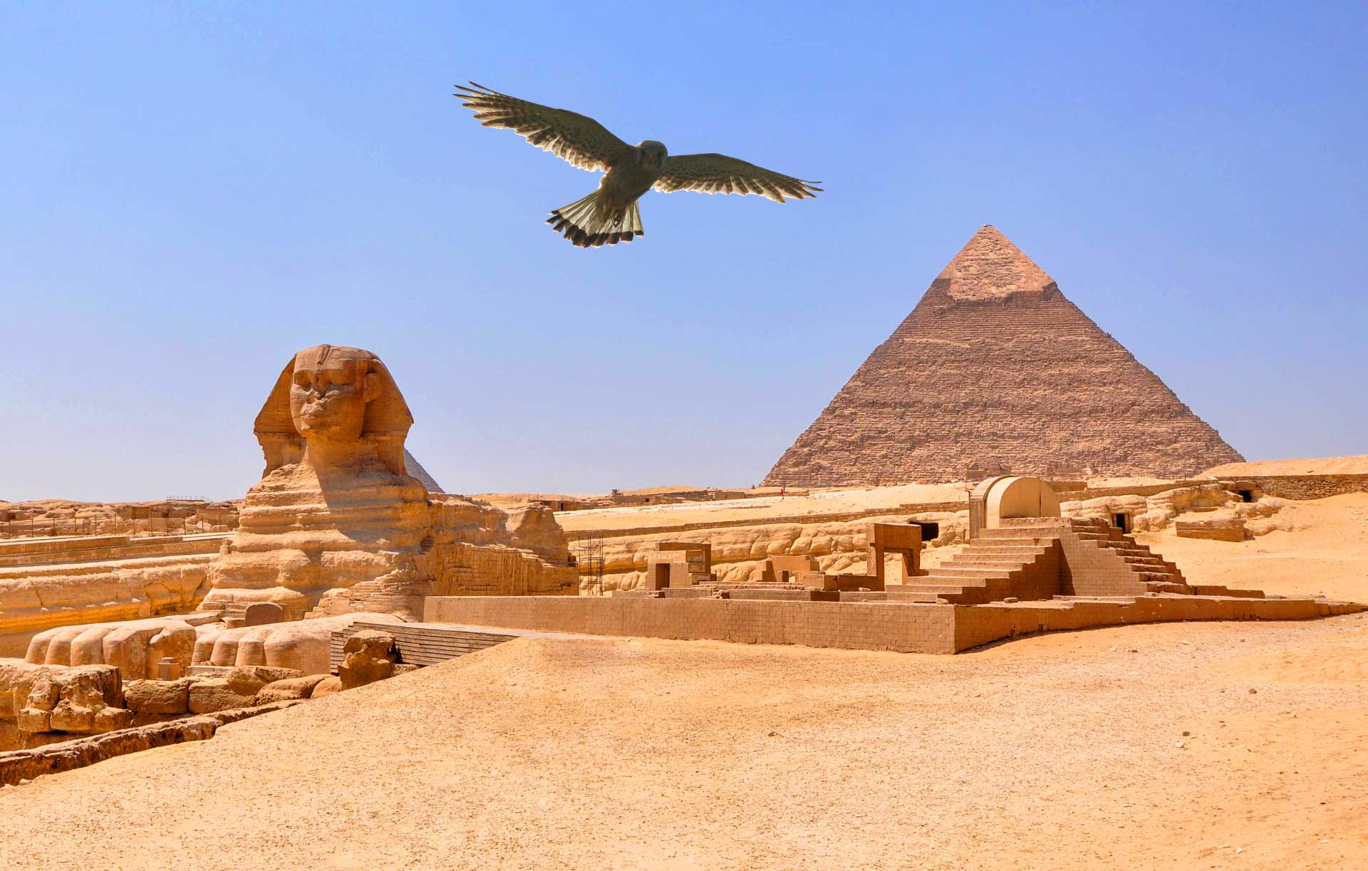 8 Awesome Facts About Ancient Egypt