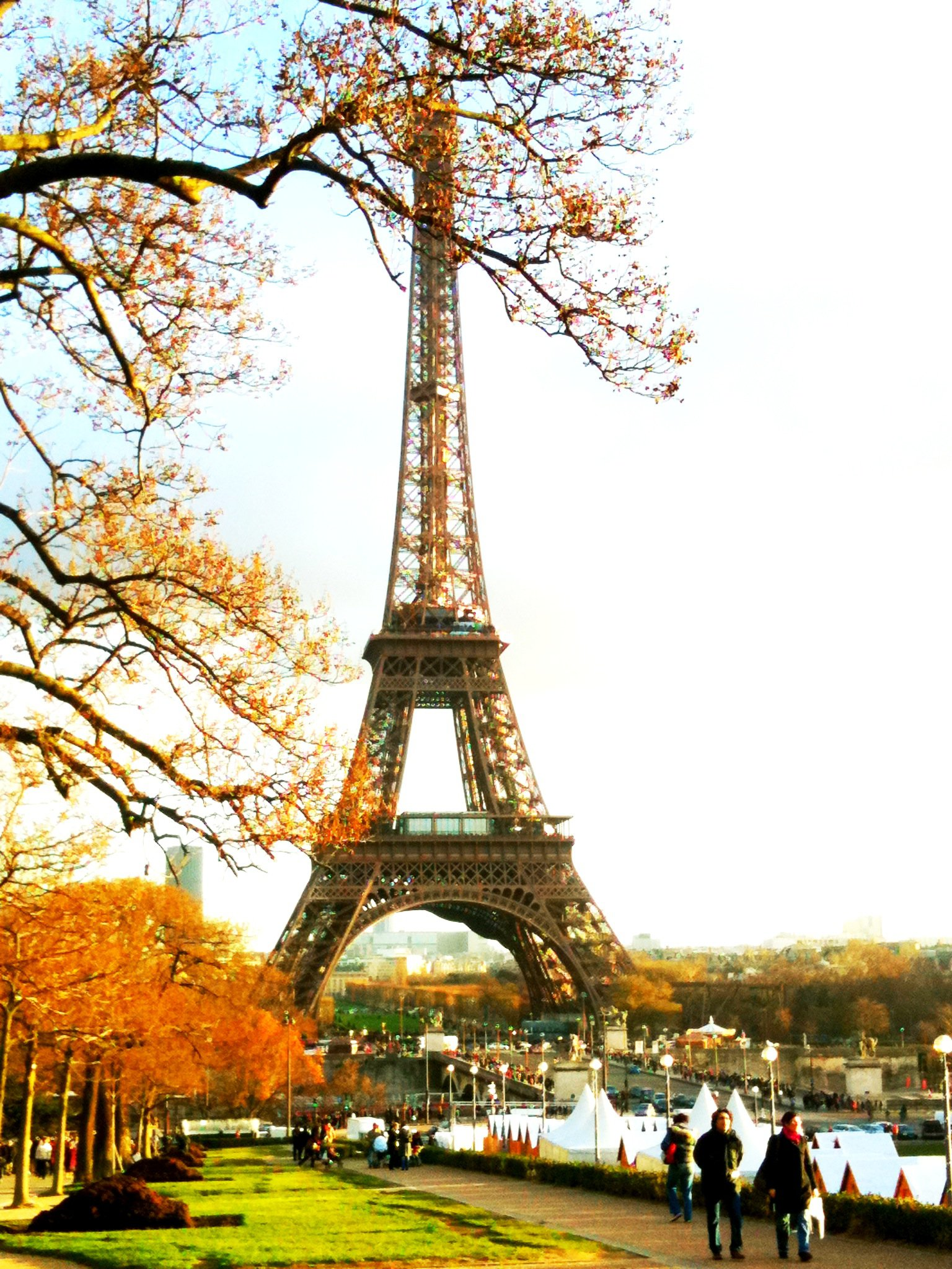 Eiffel tower in autumn photo
