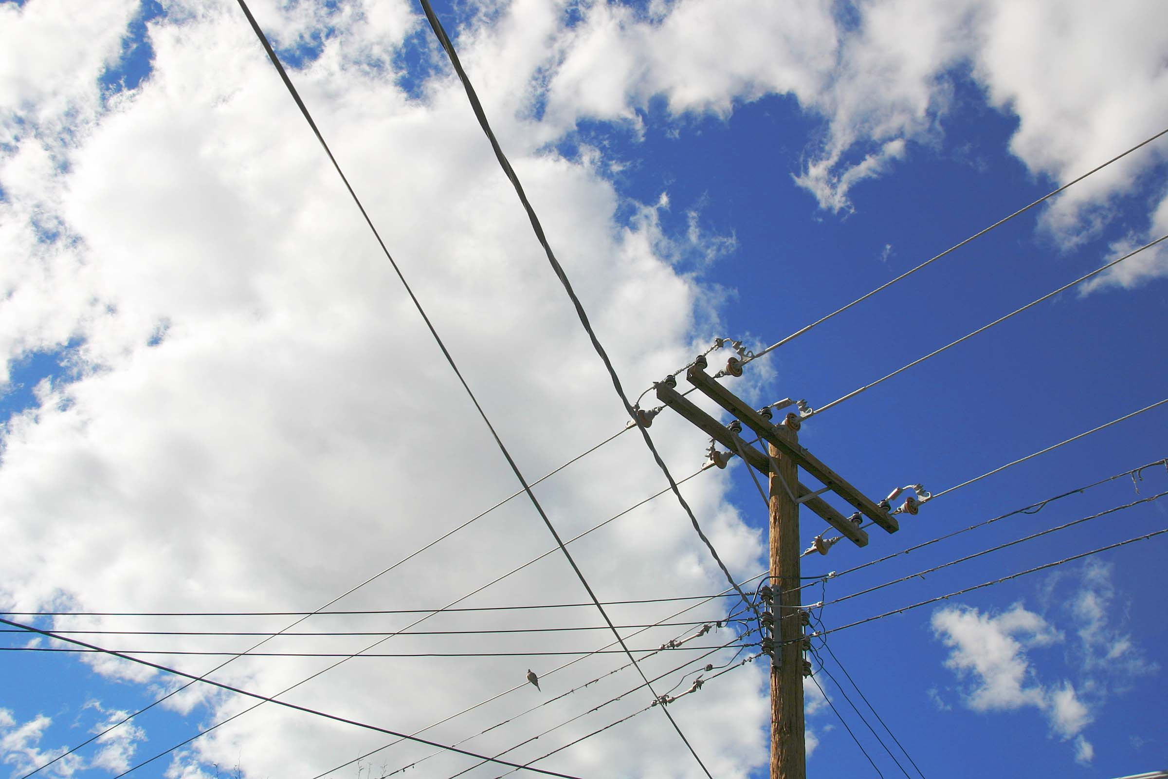 Electric Safety | Delaware Electric Cooperative