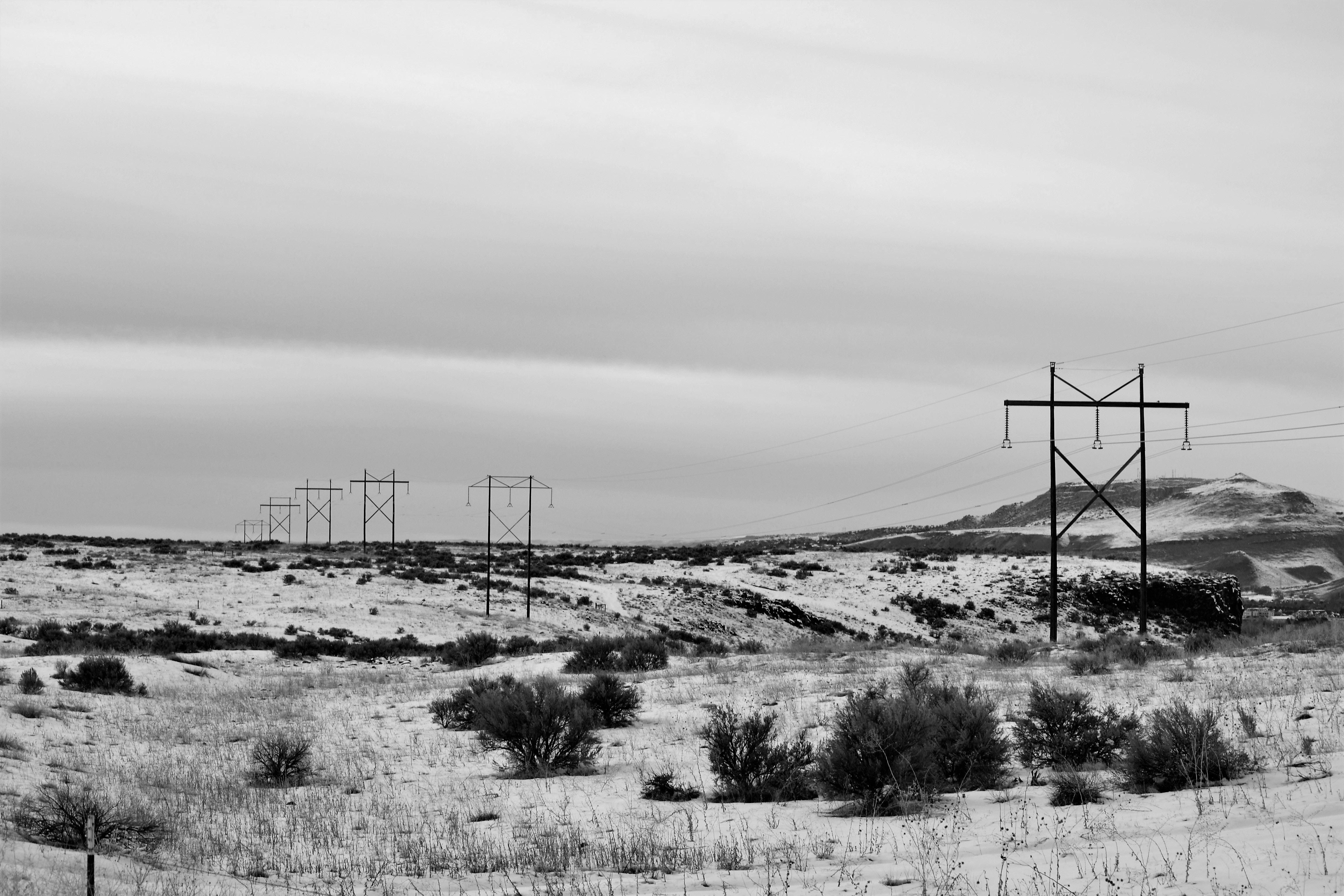 Gray electric posts photo