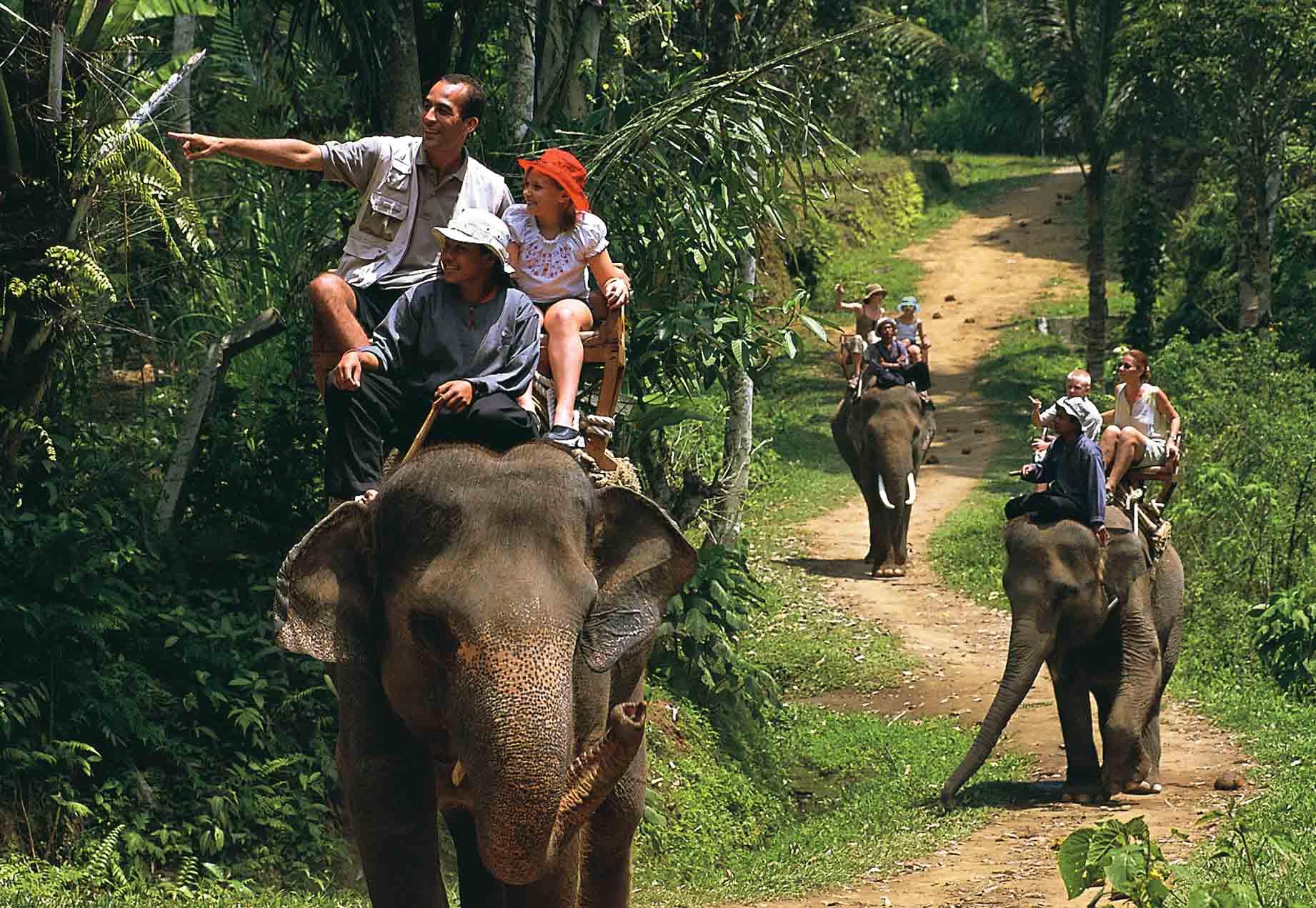 Riding the elephant photo