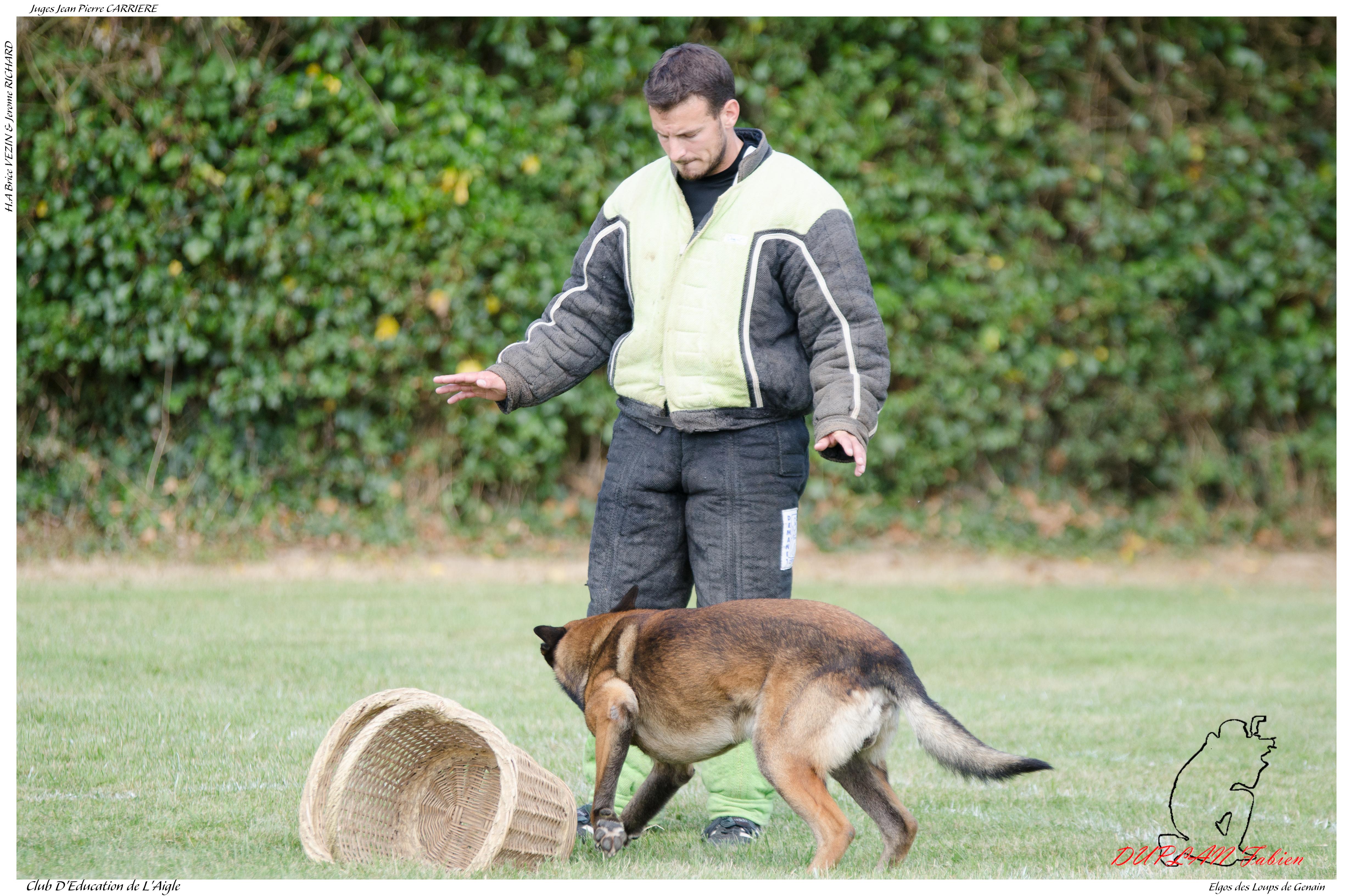 Elgos des loups de genain duplan e - -3514 photo