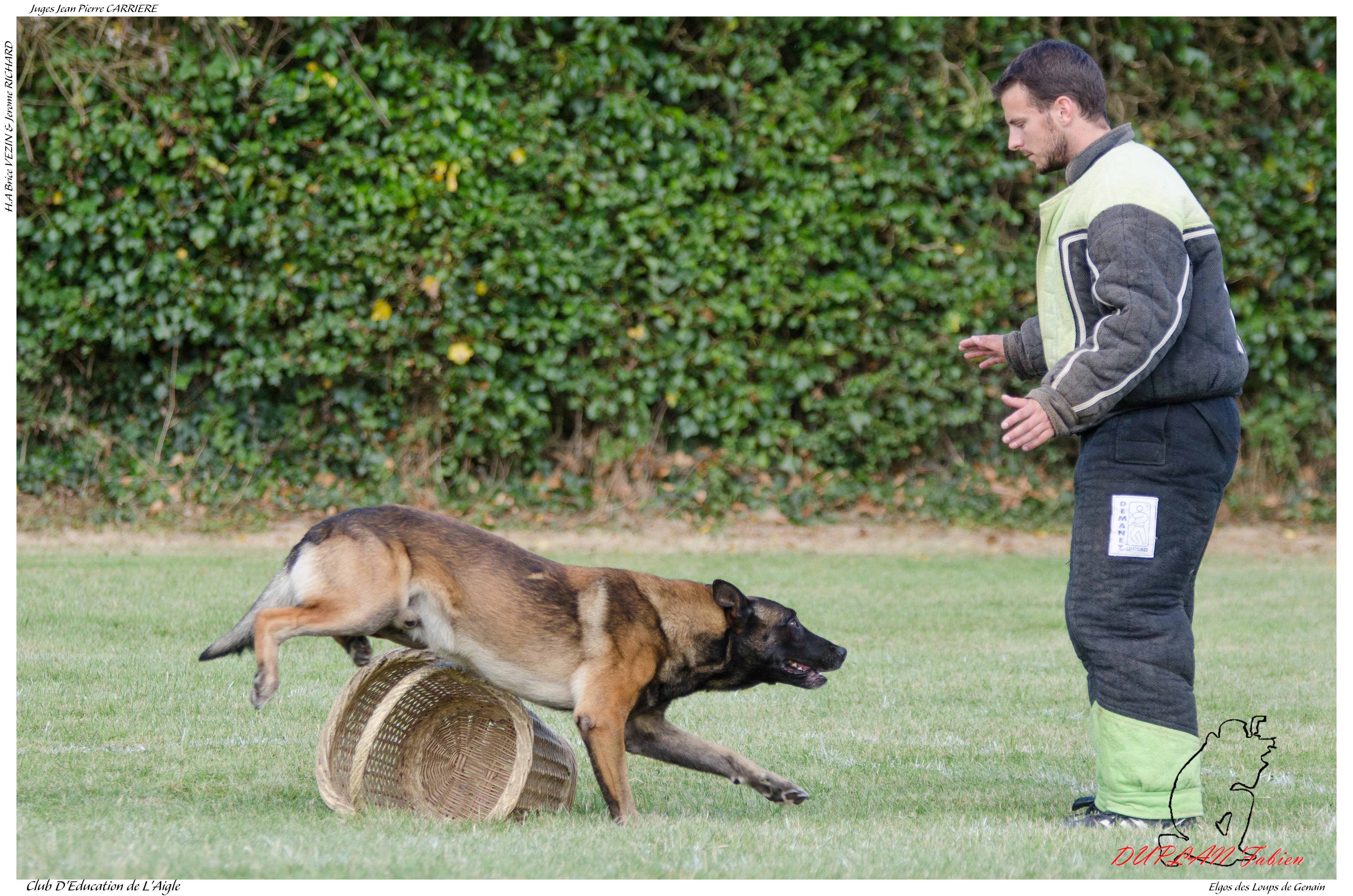 Elgos des loups de genain duplan e - -3518 photo
