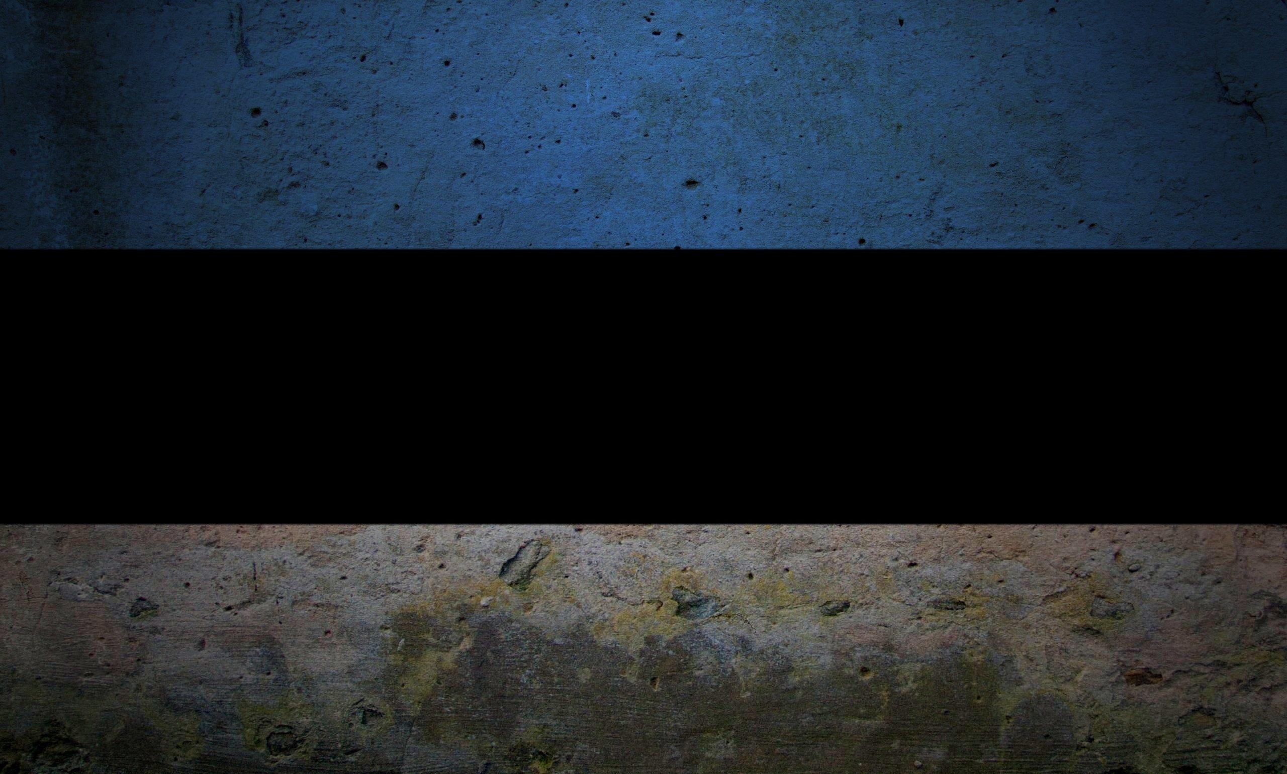 Estonia grunge flag photo
