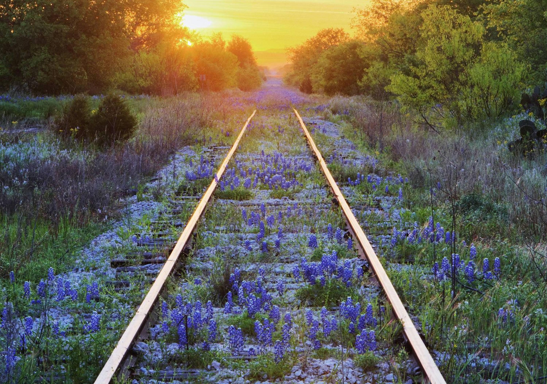 Flowers: Sunset Usa Lines Bonnets Railroad America Blue Evening ...