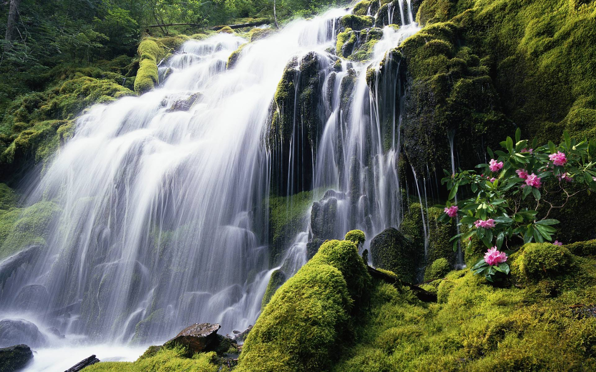 Exotic, waterfall, desktop, nature, wallpapers - WallpapersPics