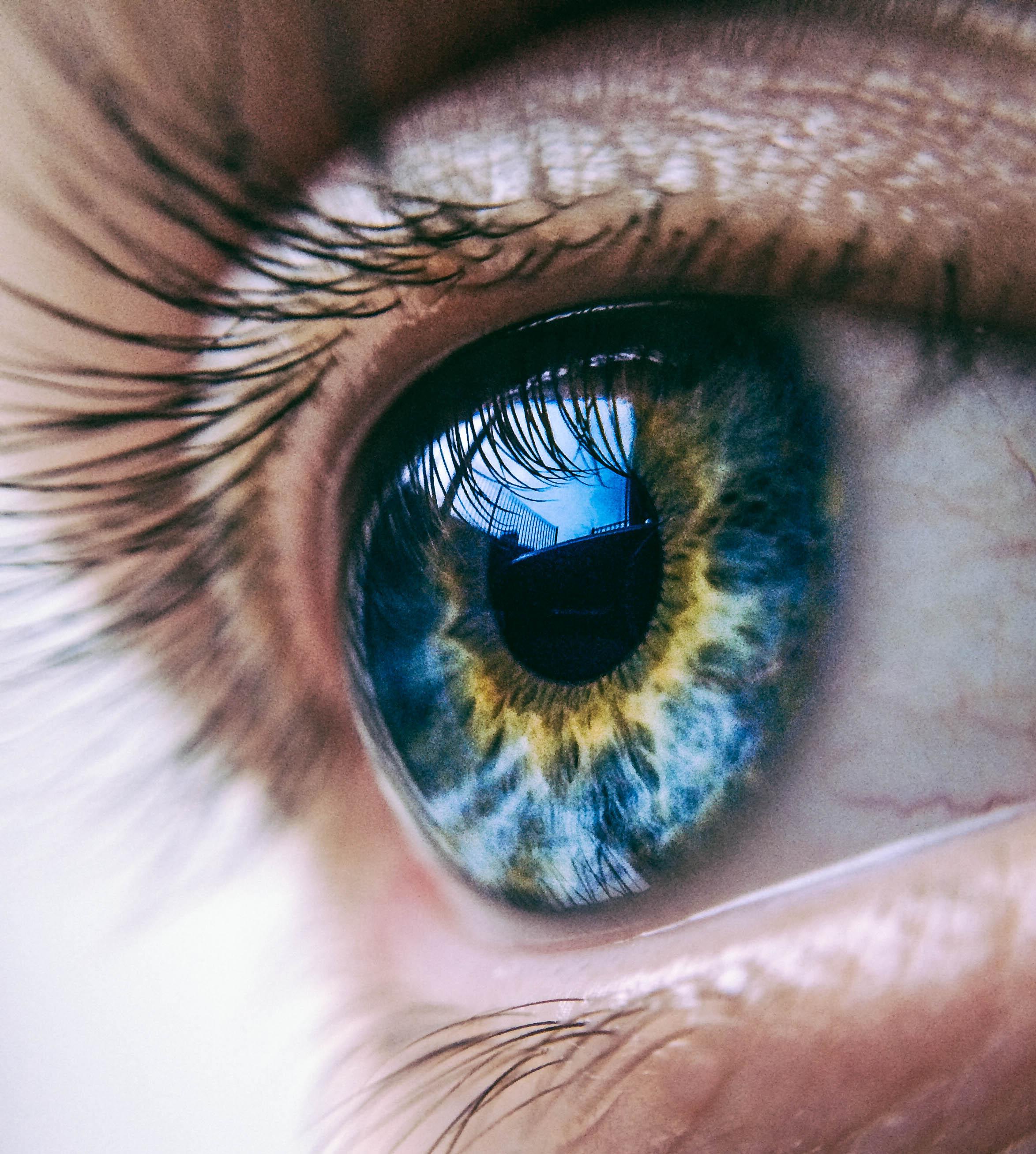 Free photo: Eye Close up - Child, Close, Closeup - Free ...