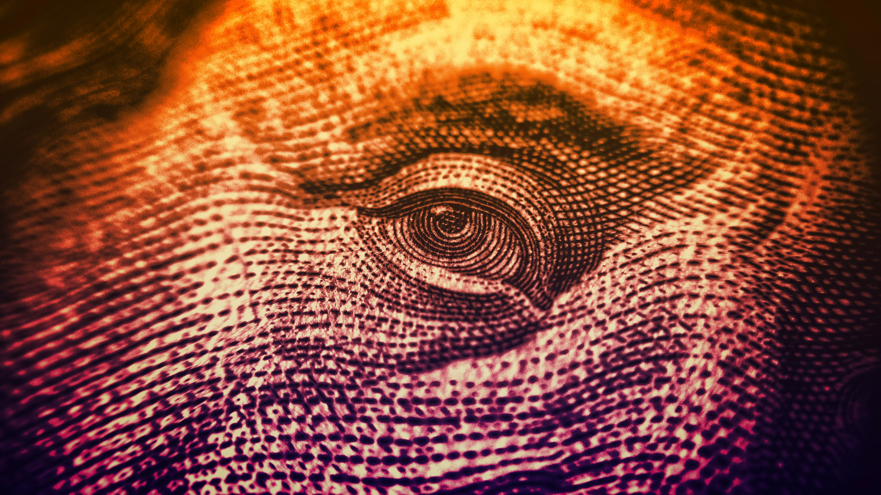 Eyes on The Dollar - Money and Finance - Colorized, Accounting, Monetary, Paying, Pay, HQ Photo