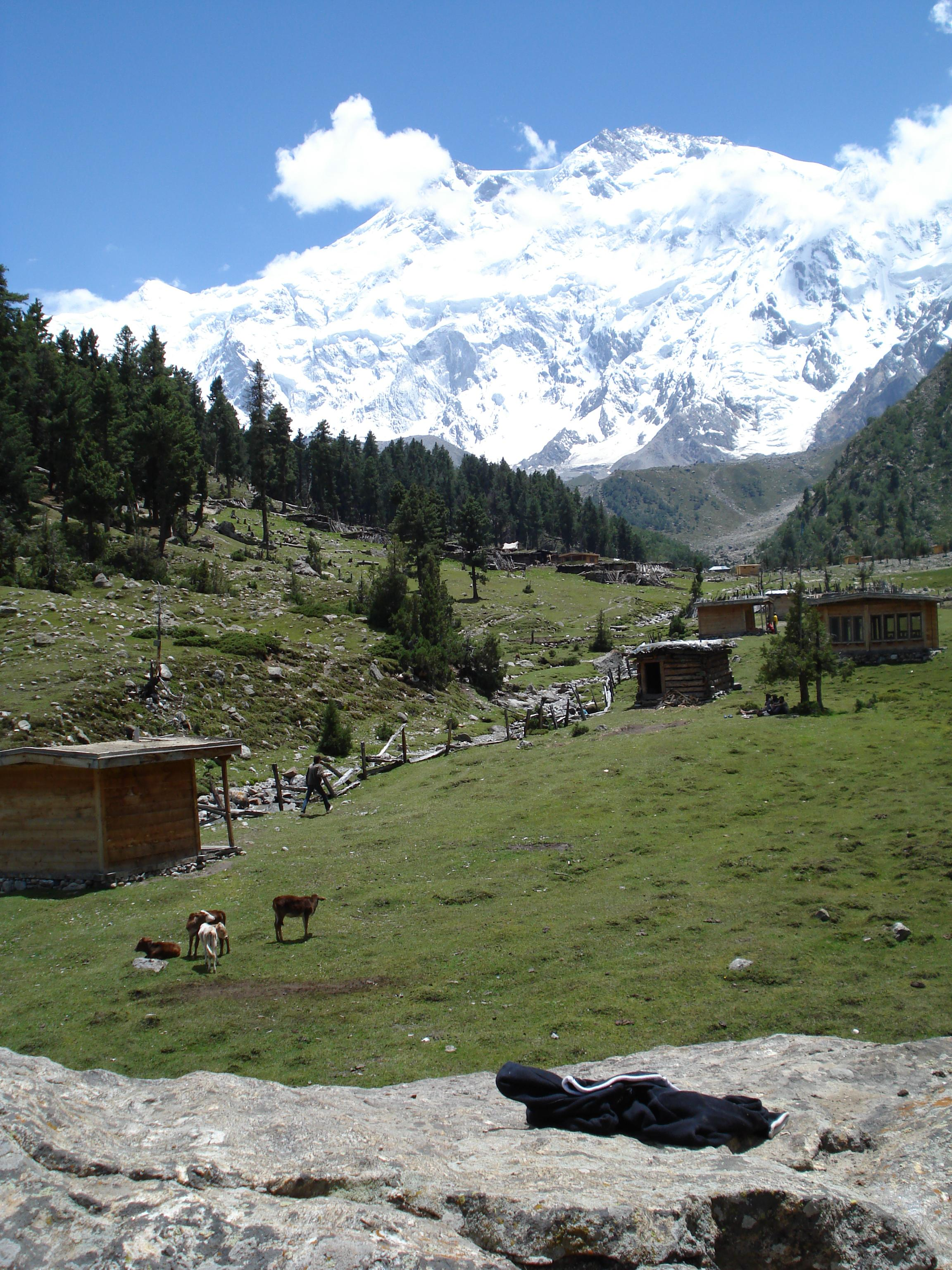 Fairy meadows photo