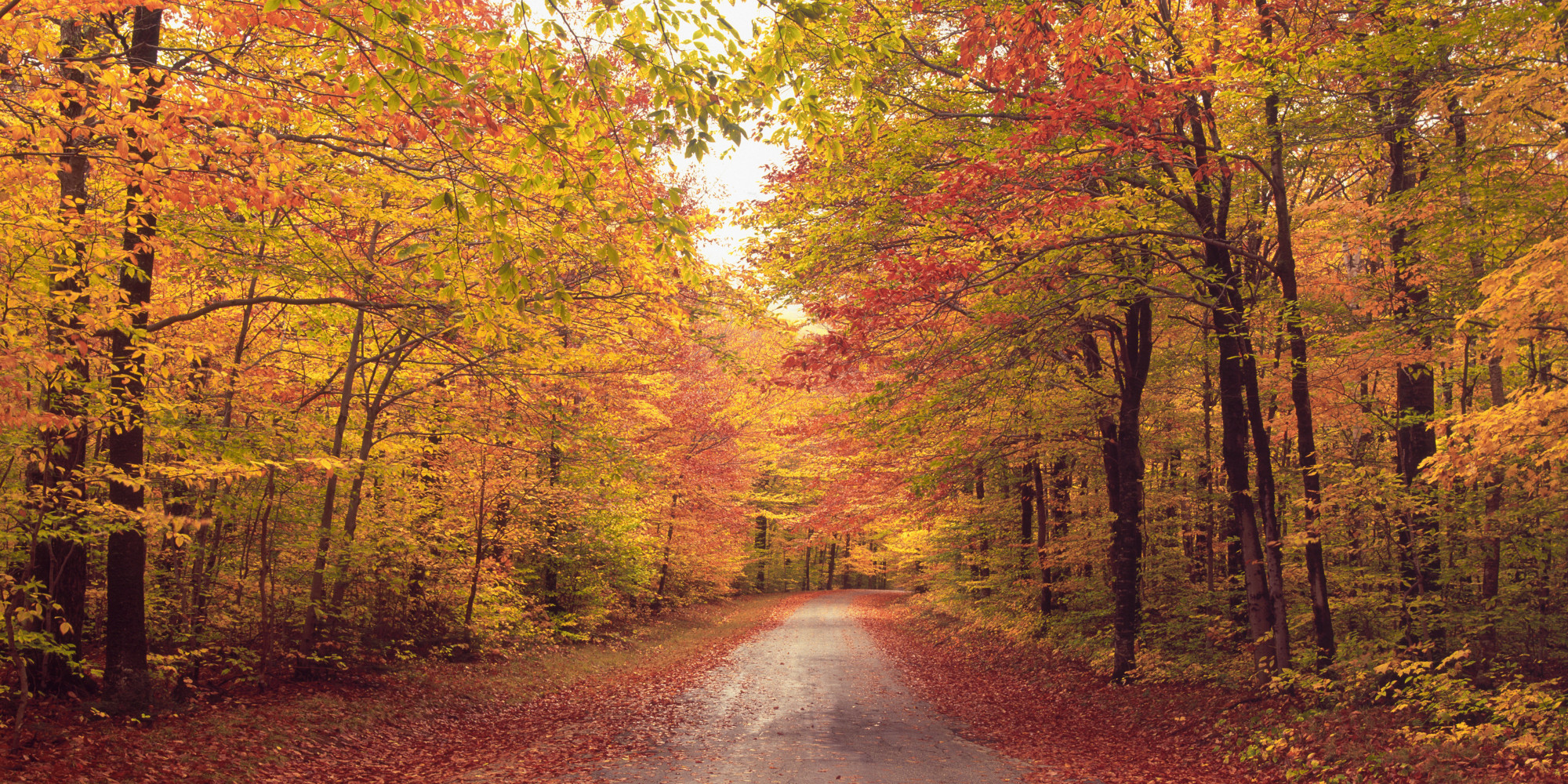 First Day Of Fall 2013: The Autumnal Equinox Is Here | HuffPost