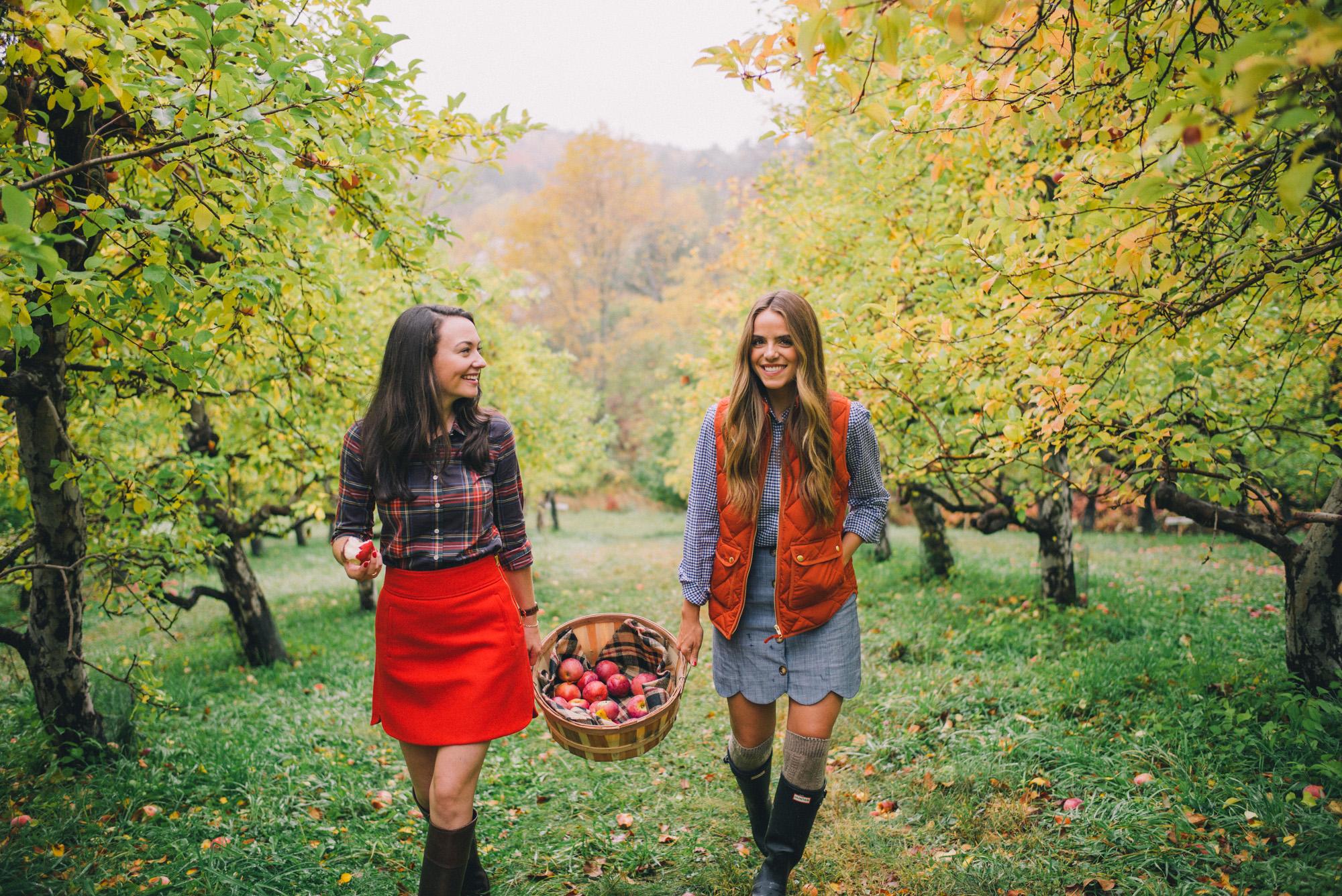 Fall Blog - Lillian Vernon Blog