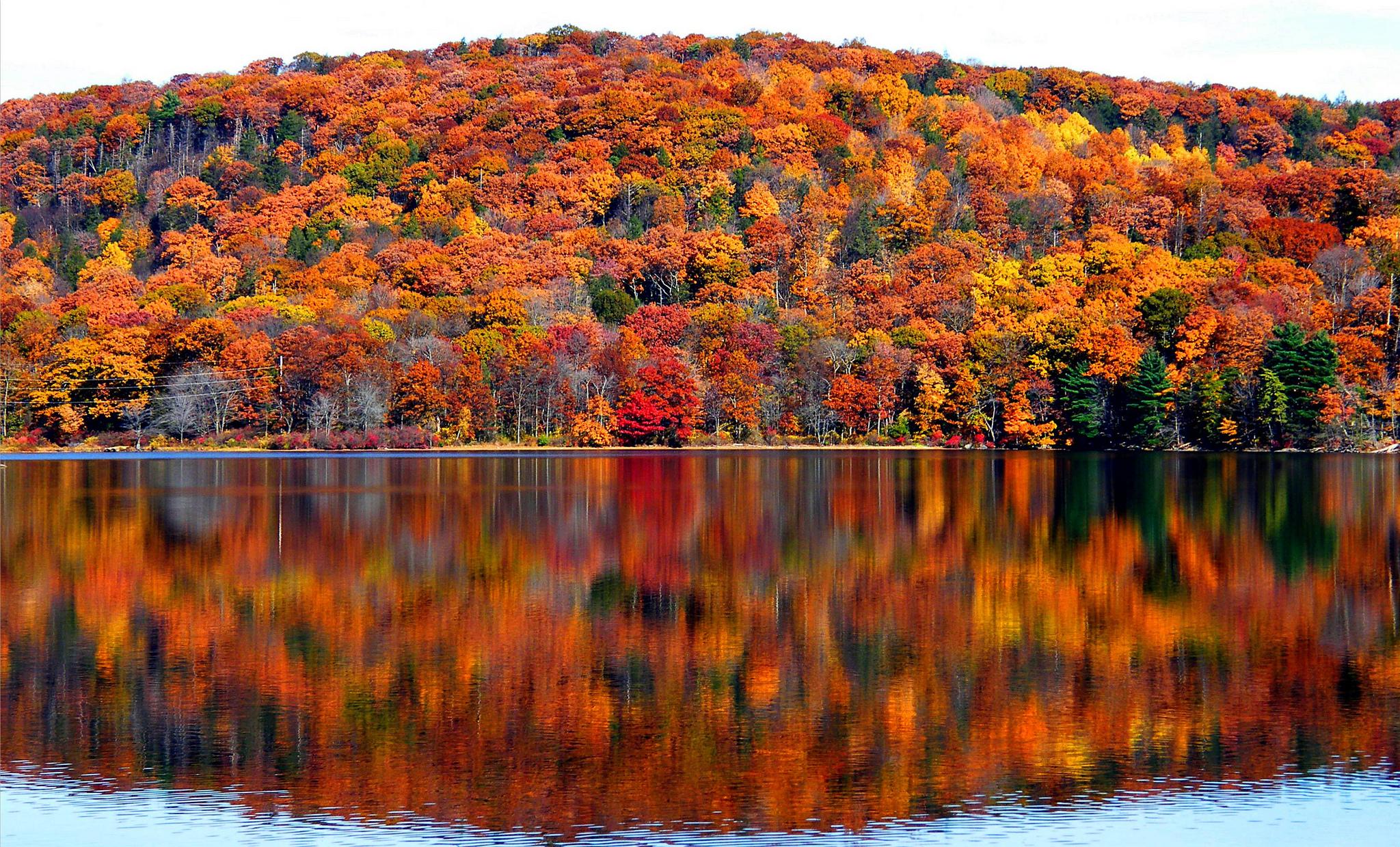 Reminders for Fall - Blog - Saranghae