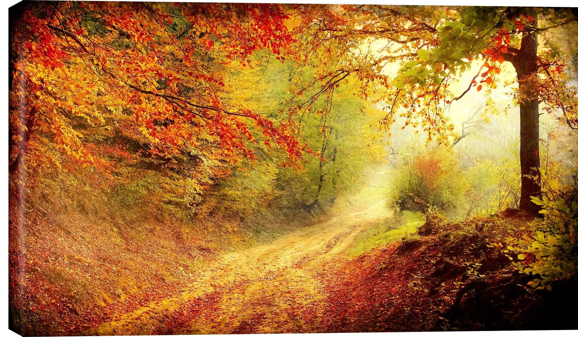 Crisp Fall Morning