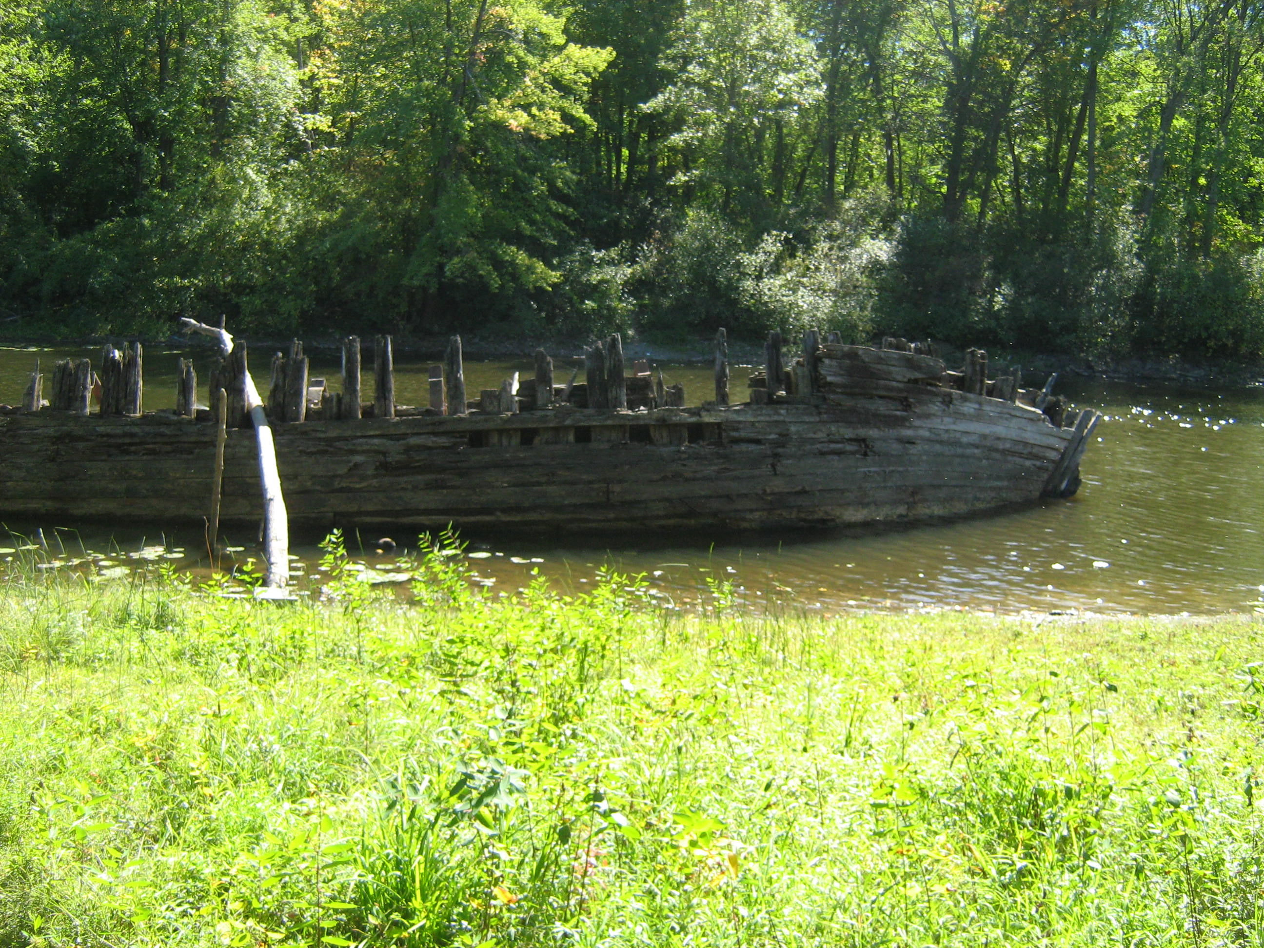Fall forest shipwreck photo