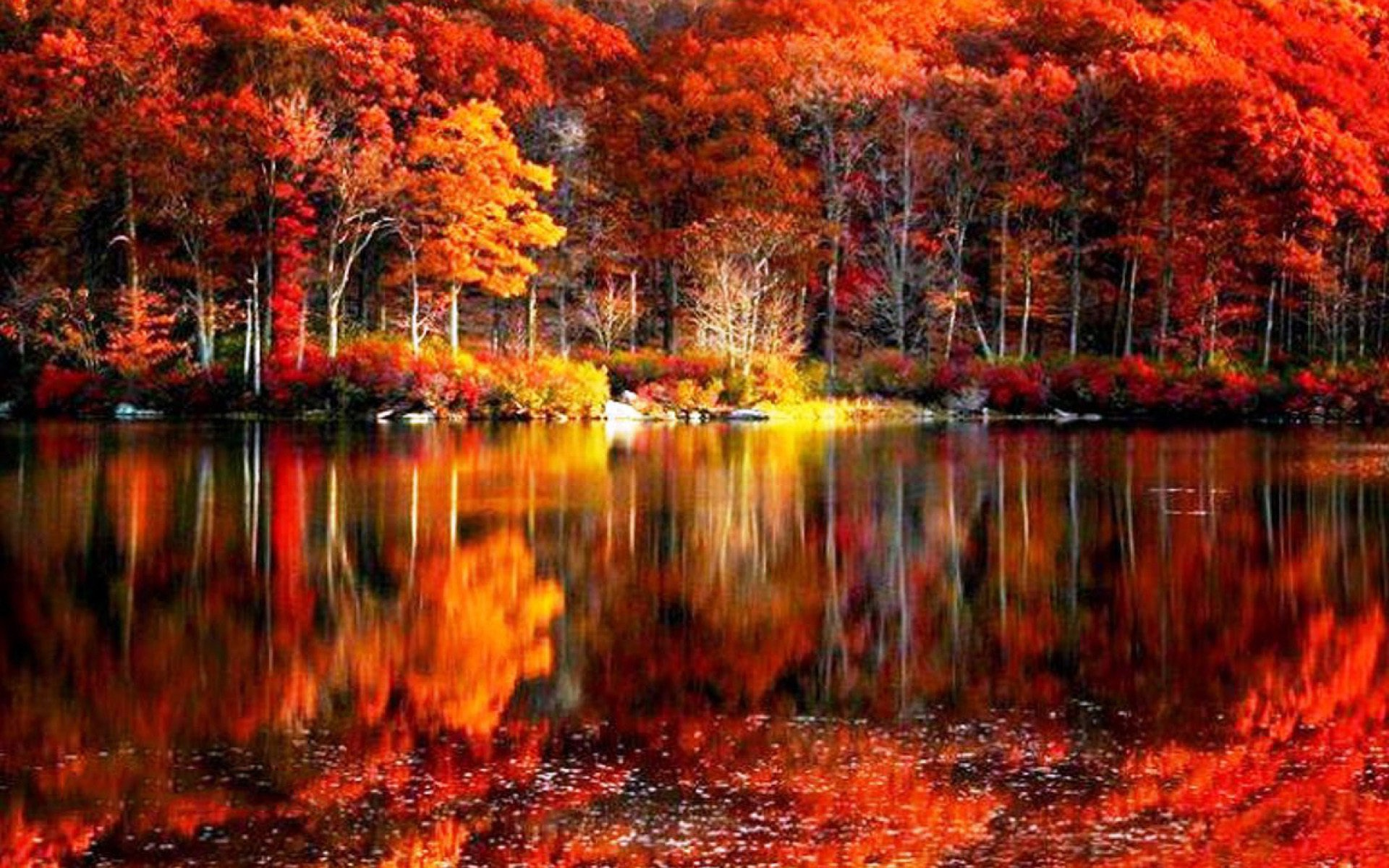 Autumn Lakes Fall Scenery Wallpaper