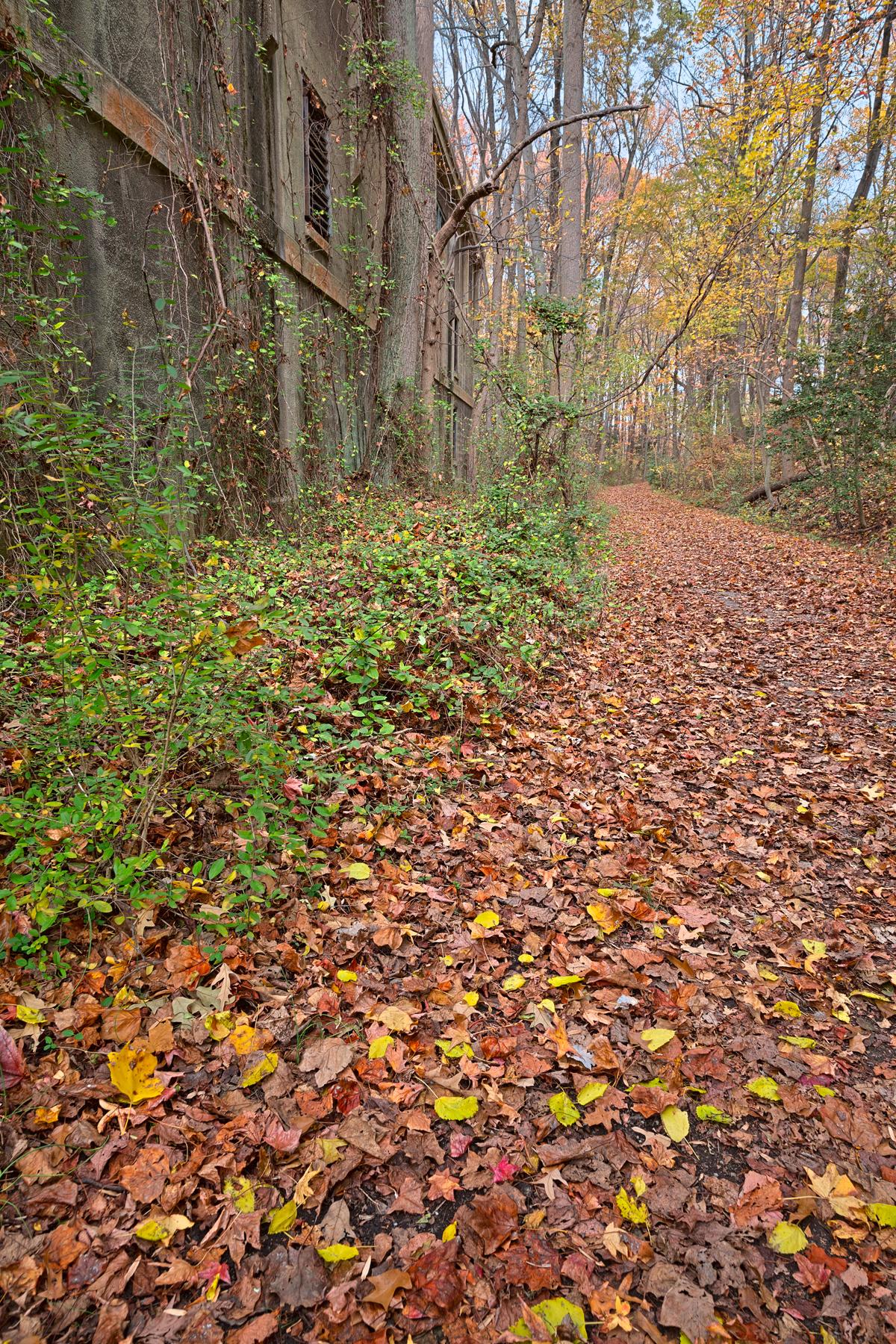 Fall power house trail - hdr photo