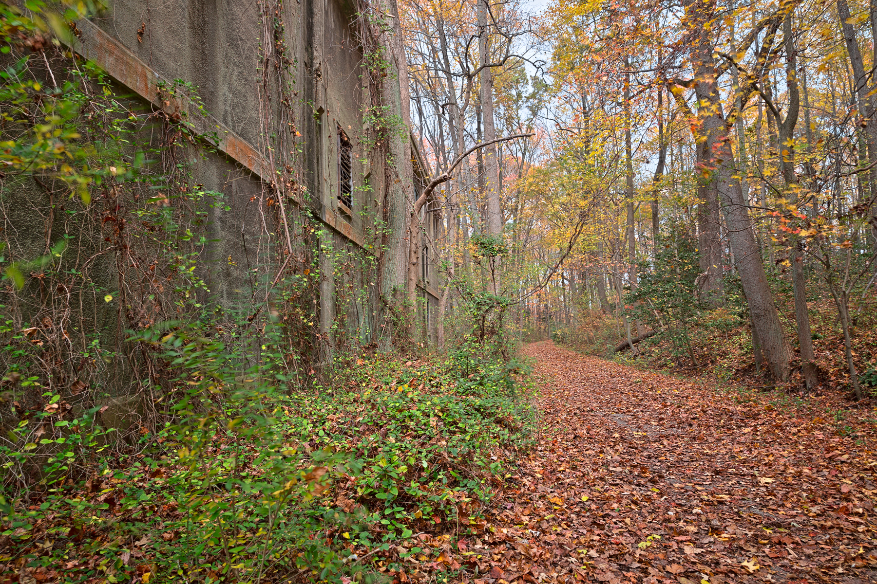 Fall power house trail - hdr photo