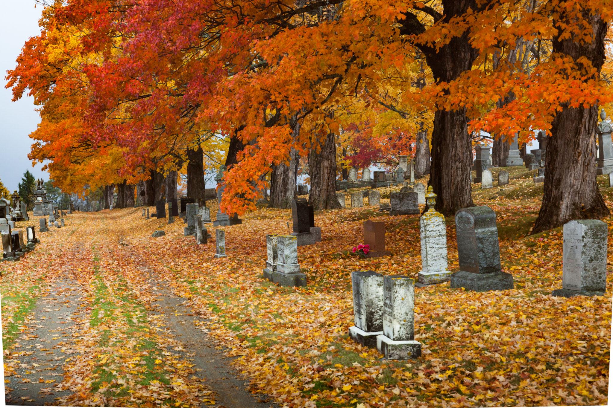 Seasons in Maine: Fall - Oct 7-13, 2018 - Maine Media Workshops + ...