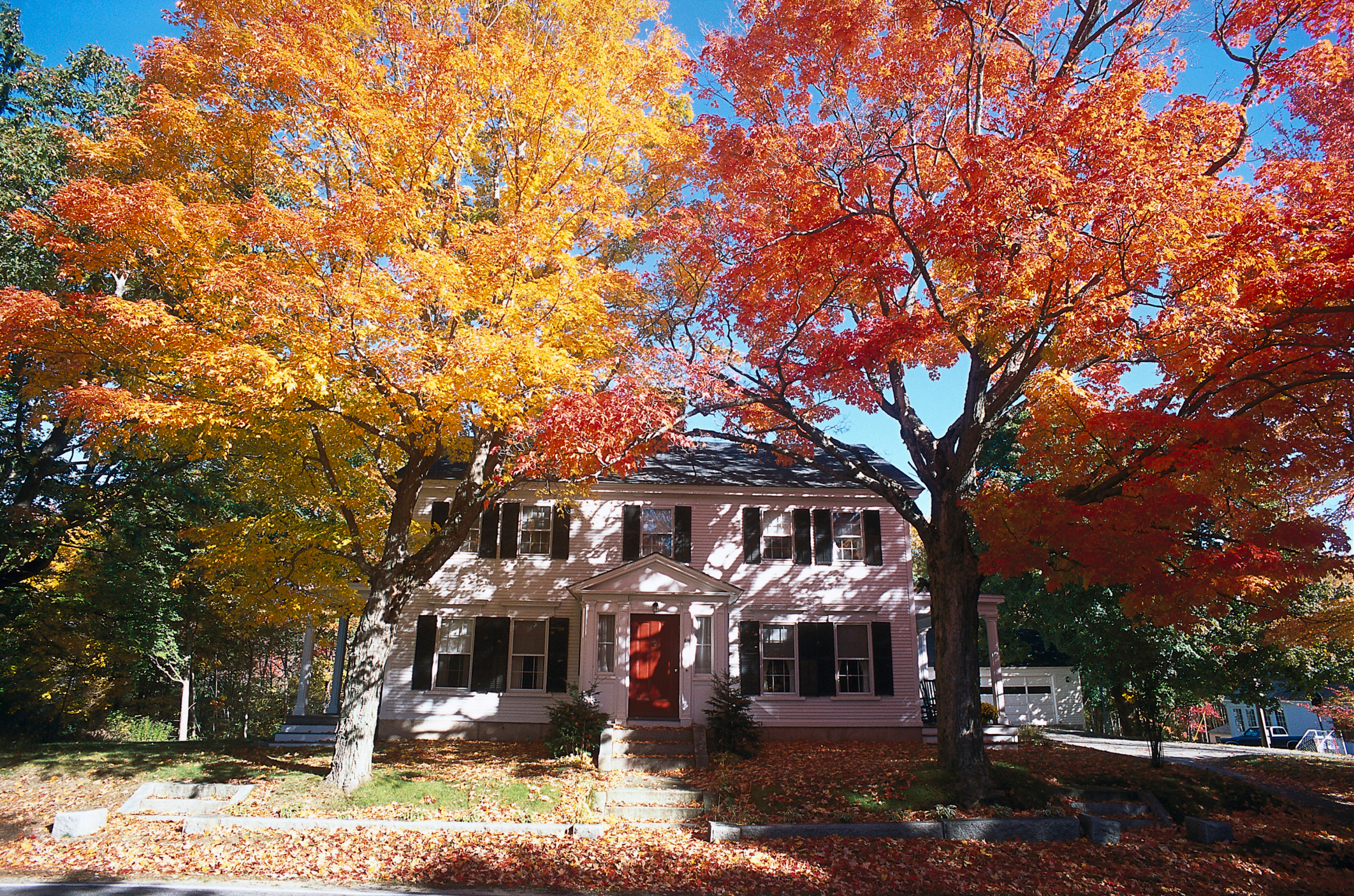 Use This Fall Season to Prepare for Your Spring Listing