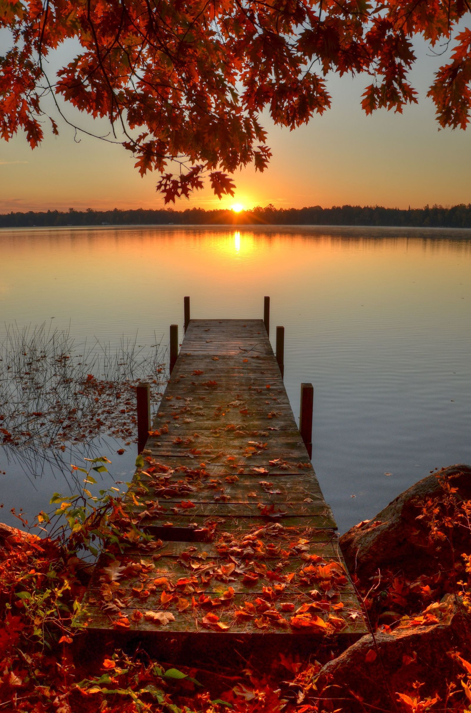 14 Reasons 'Country Living' Loves Fall | Hot toddy, Editor and Autumn