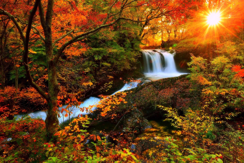 Waterfalls: Autumn Waterfalls Photography Sunlight Love Seasons ...
