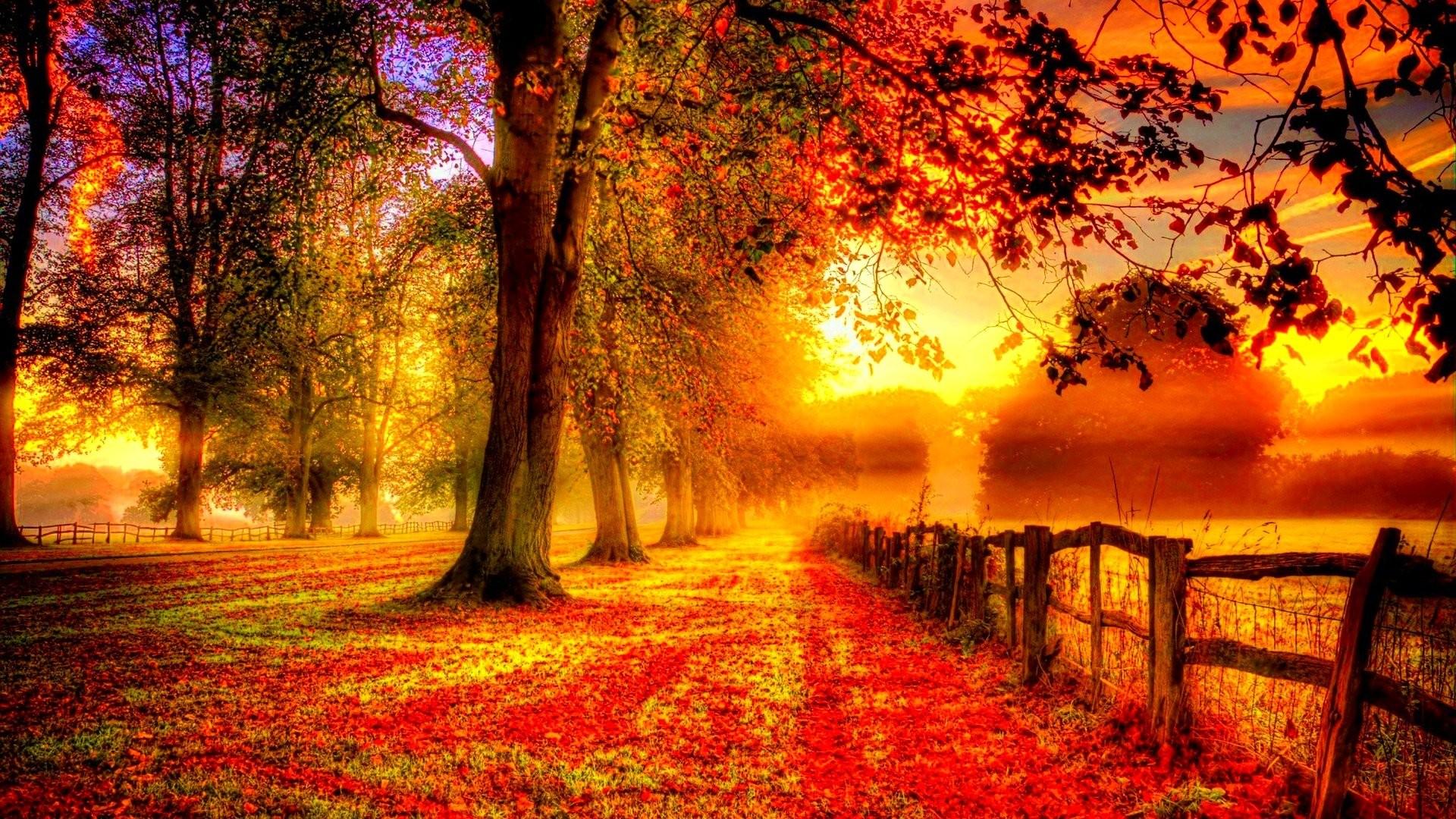 Nature & Landscape Season Autumn wallpapers (Desktop, Phone, Tablet ...