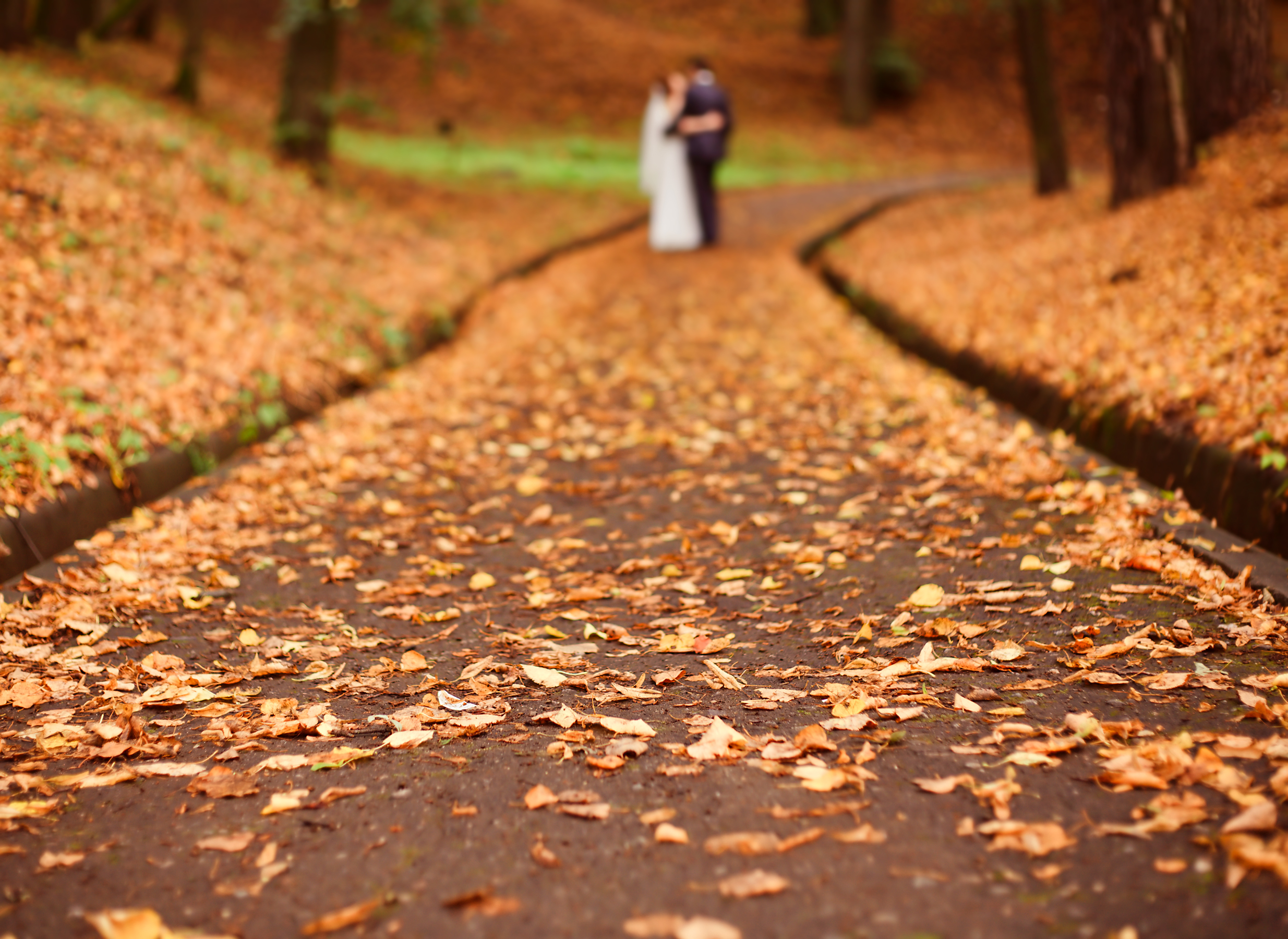 Best Wedding Destinations for Fall Season - VitalChek Blog