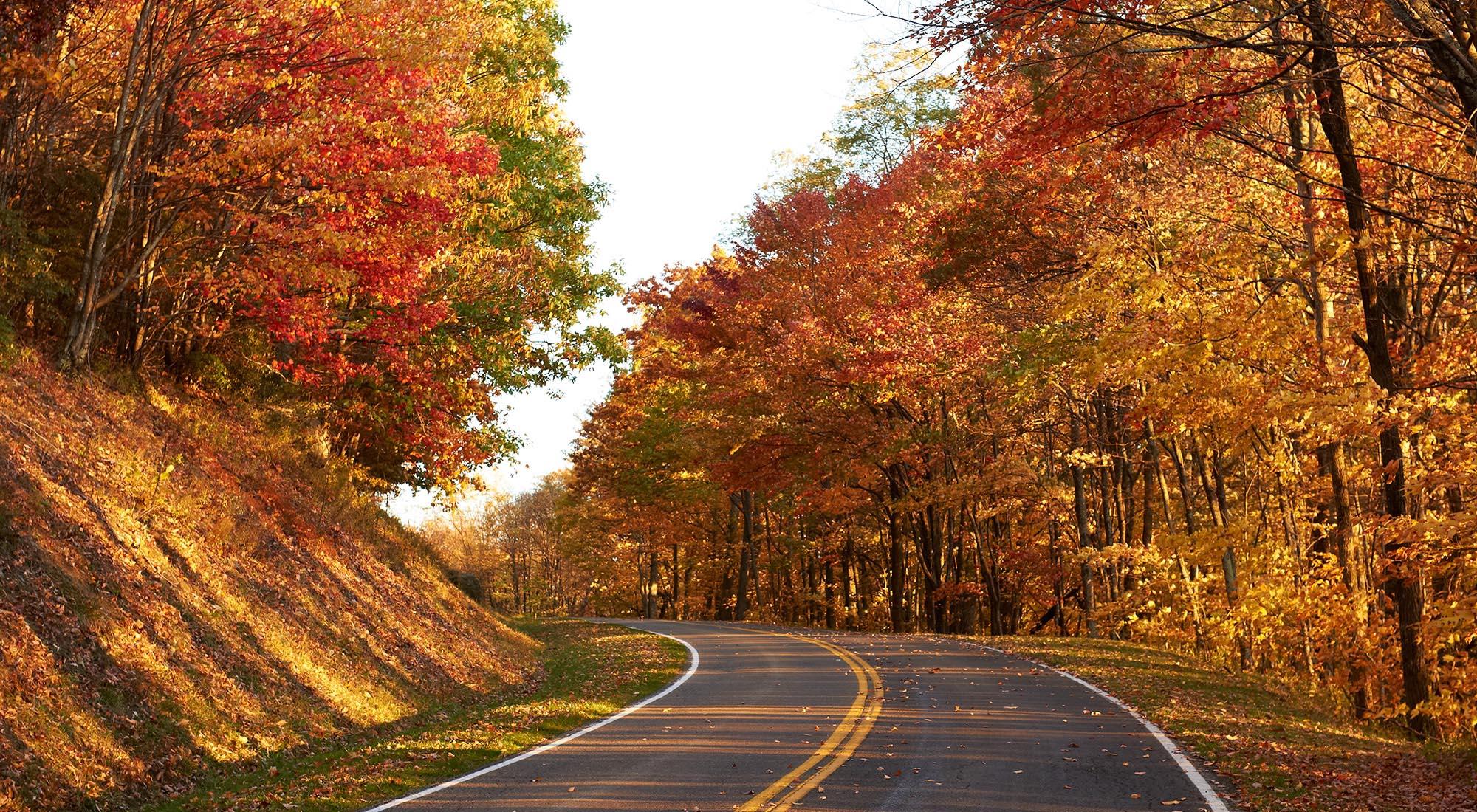 Favorite Virginia Fall Vacations - Virginia's Travel Blog