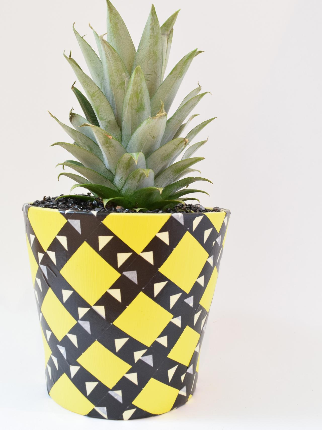 How to Grow a Pineapple and Make a Pineapple Planter | how-tos | DIY