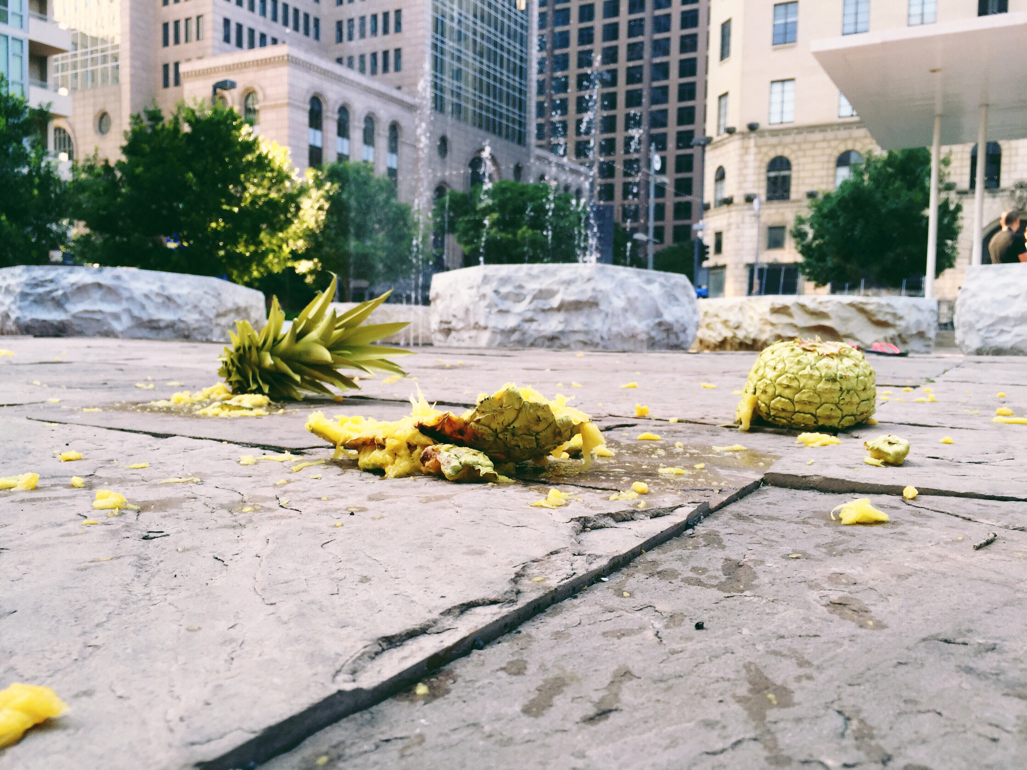 Fallen Pineapple, Architecture, Building, City, Construction, HQ Photo