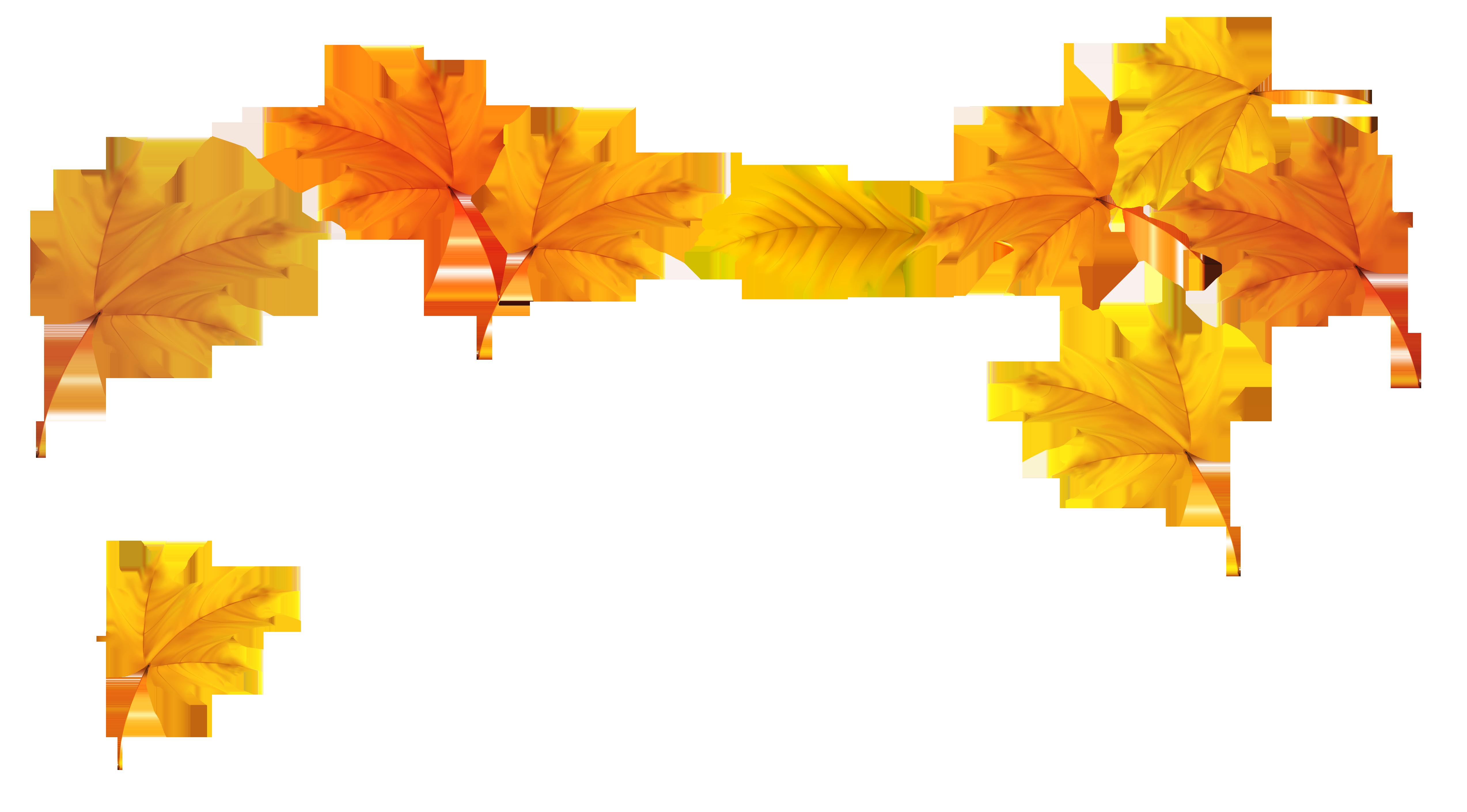 Falling Leaves Transparent Background   PNG Mart